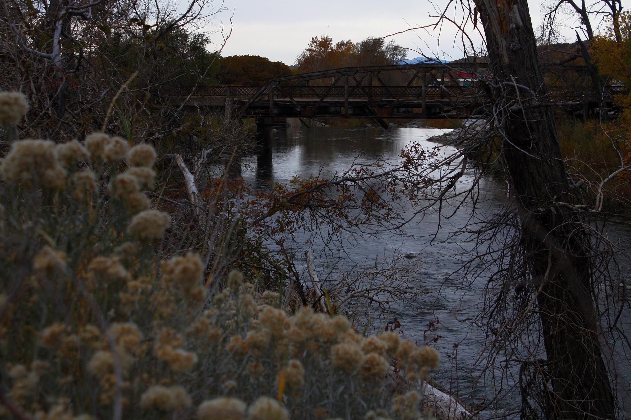Bridge by Jim Beitz