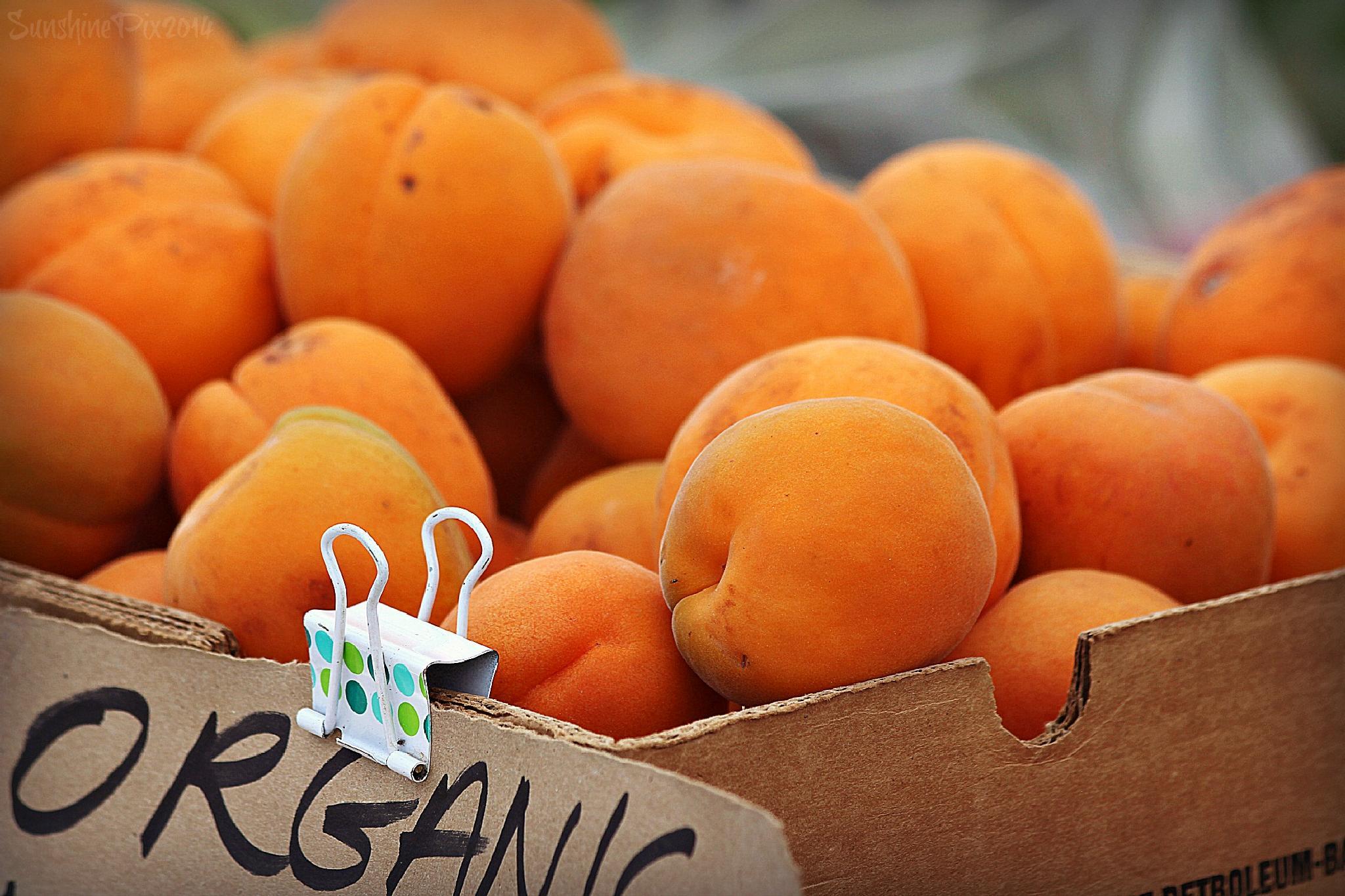 organic by DianaV