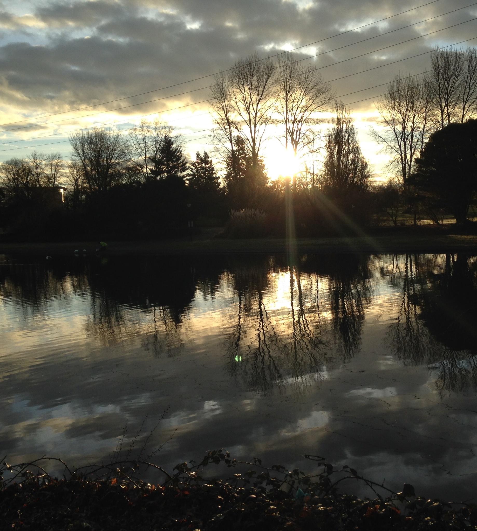 Morning in Eugene by nicole.gerding.56