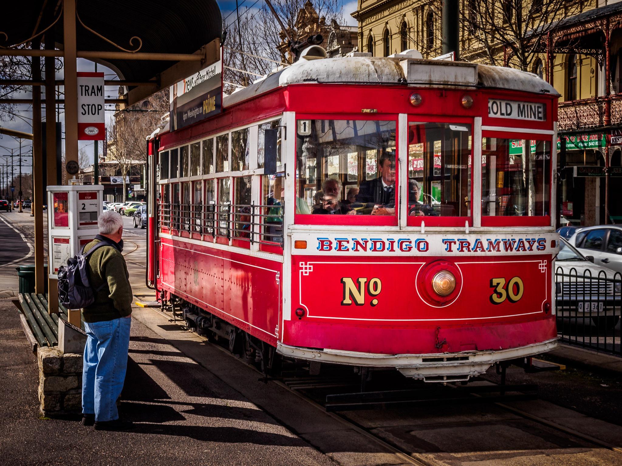 Bendigo Tram by Erich Anderson