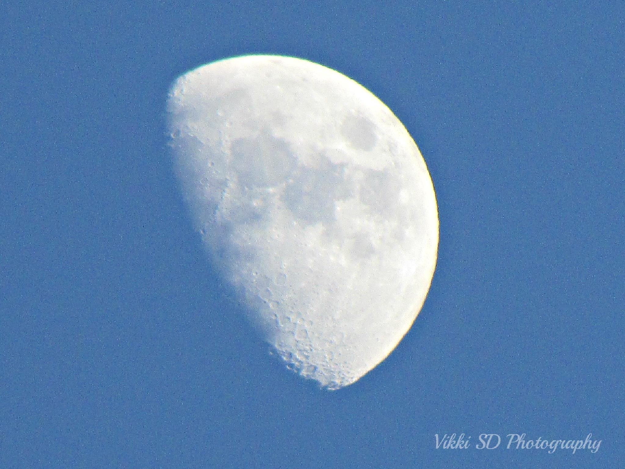 Day Moon by Vikki Schifano