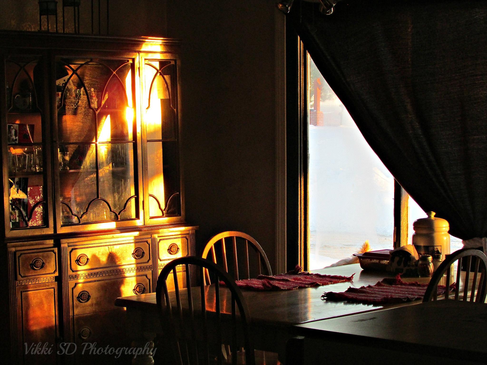 Silhouette by Vikki Schifano