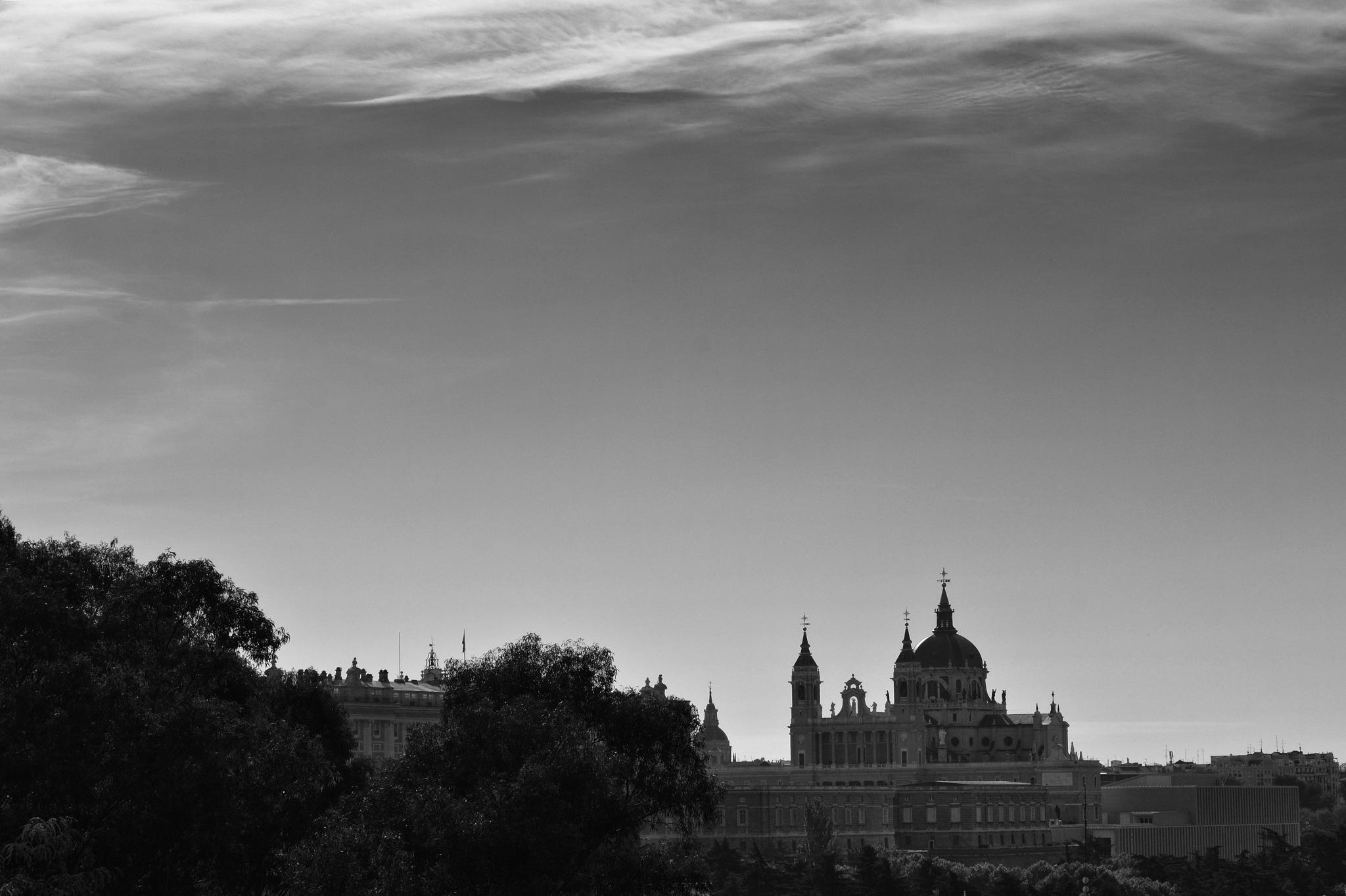 Palácio Real de Madrid e Catedral de la Almudena by Fred Matos