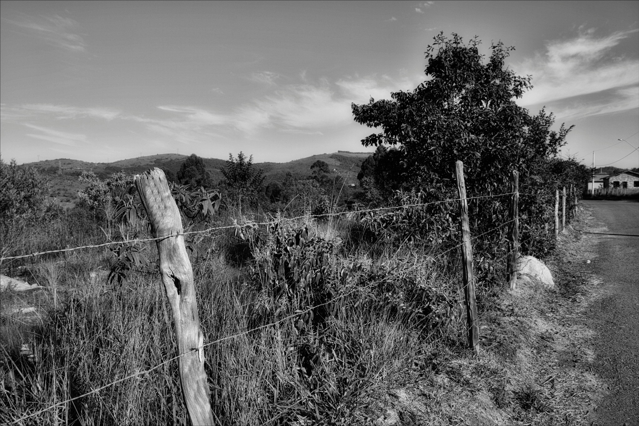 fence - b&w version by Fred Matos