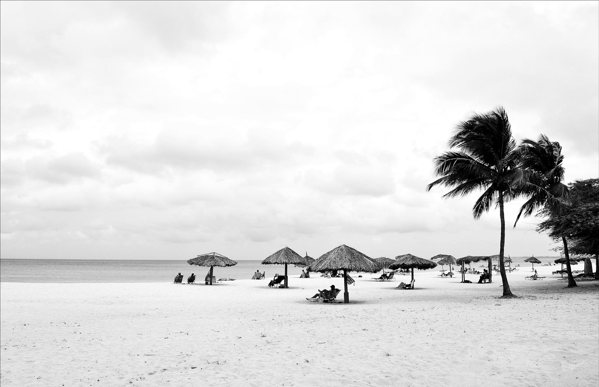 paisagem marinha em aruba by Fred Matos