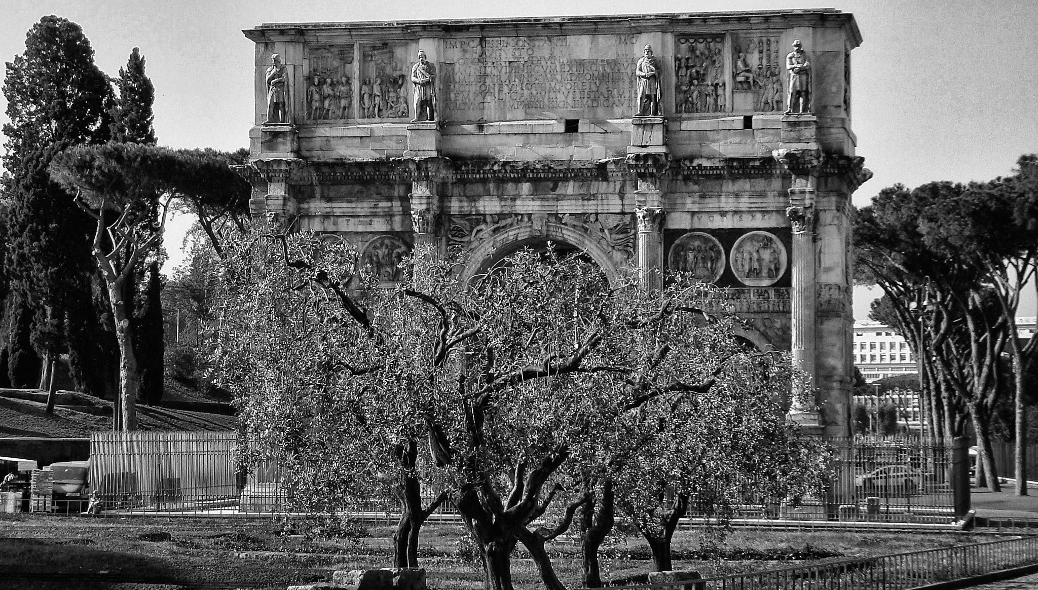arco de constantino com árvores na frente by Fred Matos