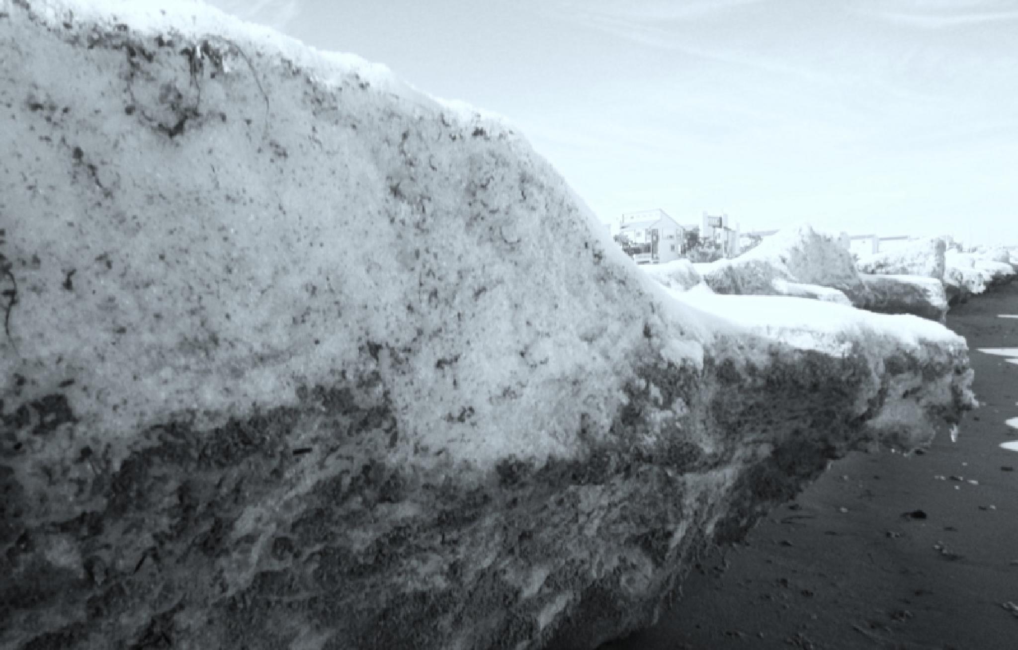 Snow on the Beach by lana.cezzar