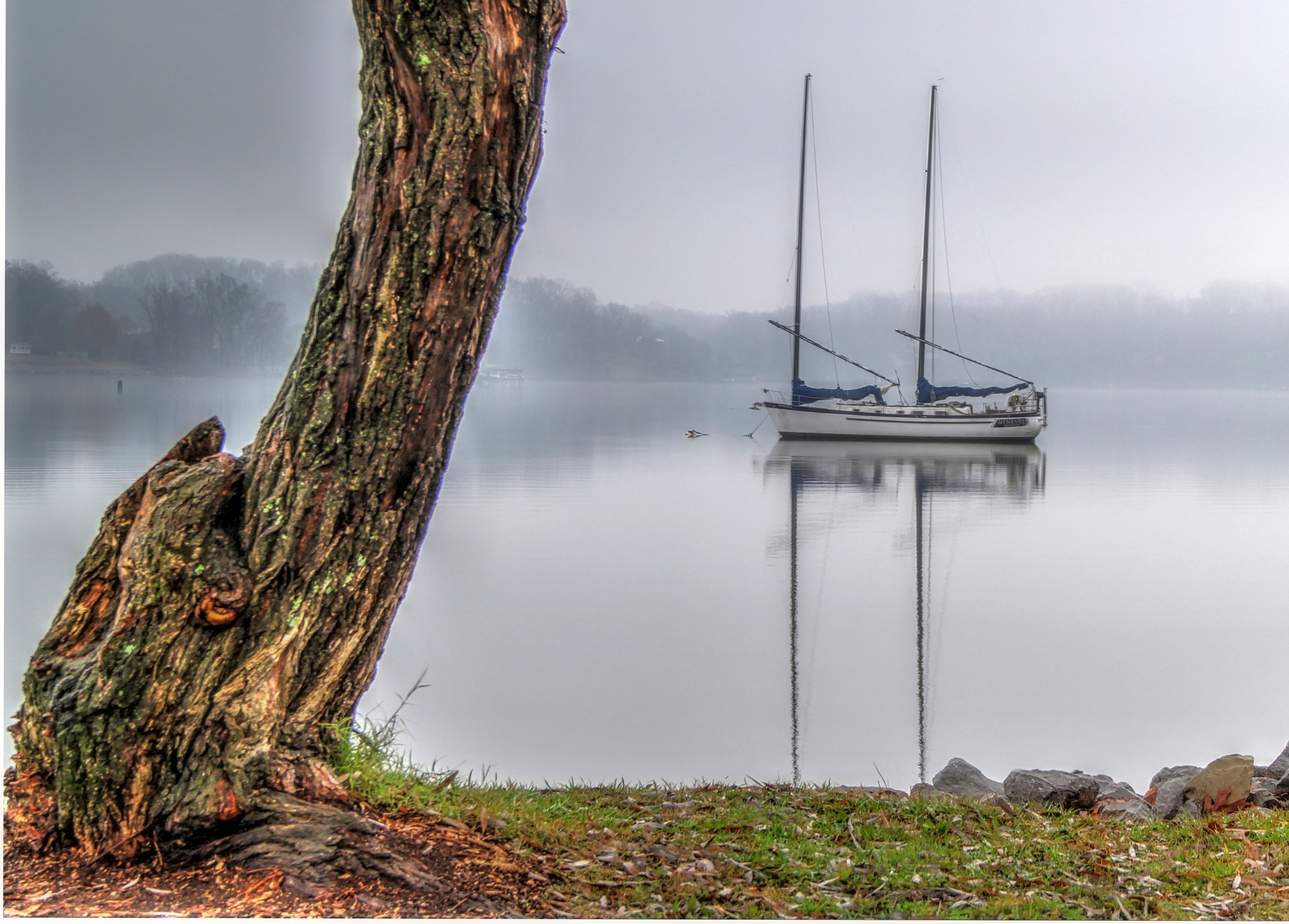 Fog In The Harbor by daryl.chamlee.9