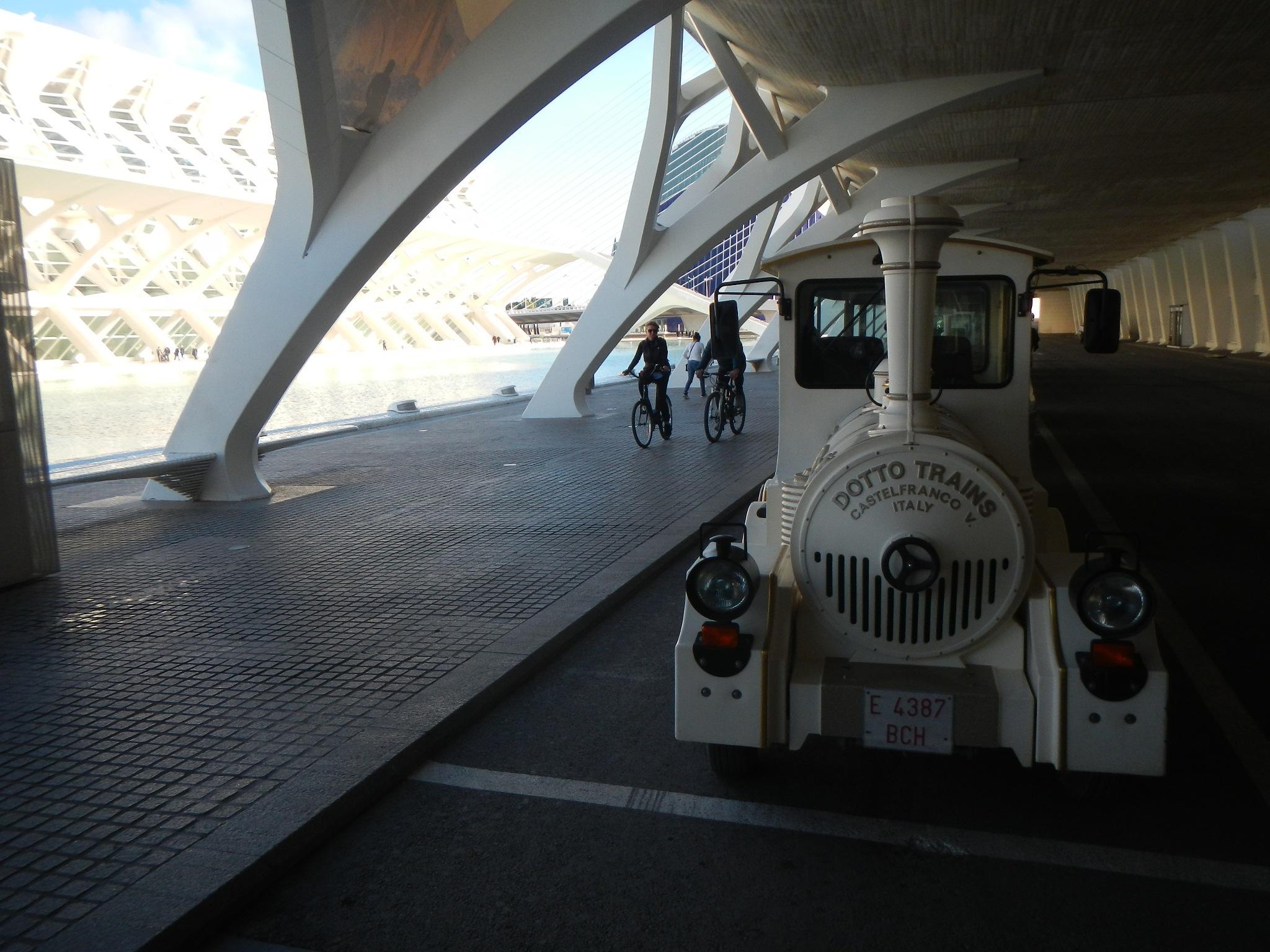City of Arts and Sciences Valencia  by Saygın Saner