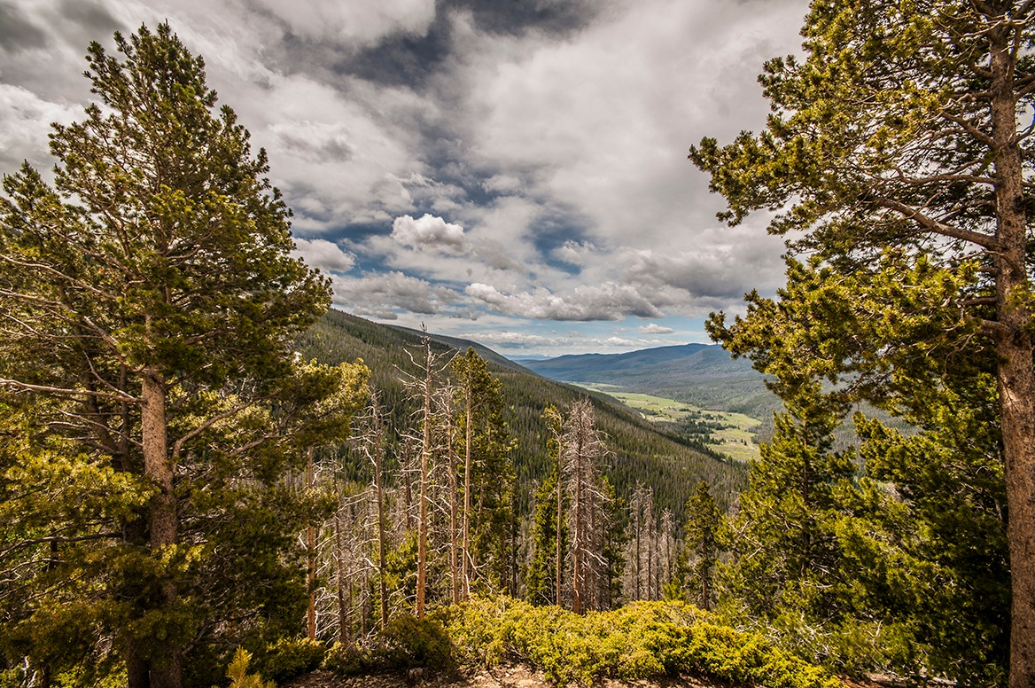 Rocky Mountains in Summer Time by Gary Armstrong Photography