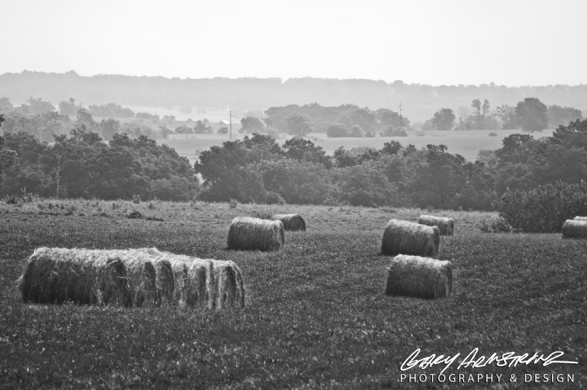 Hazy Summertime Heat by Gary Armstrong Photography