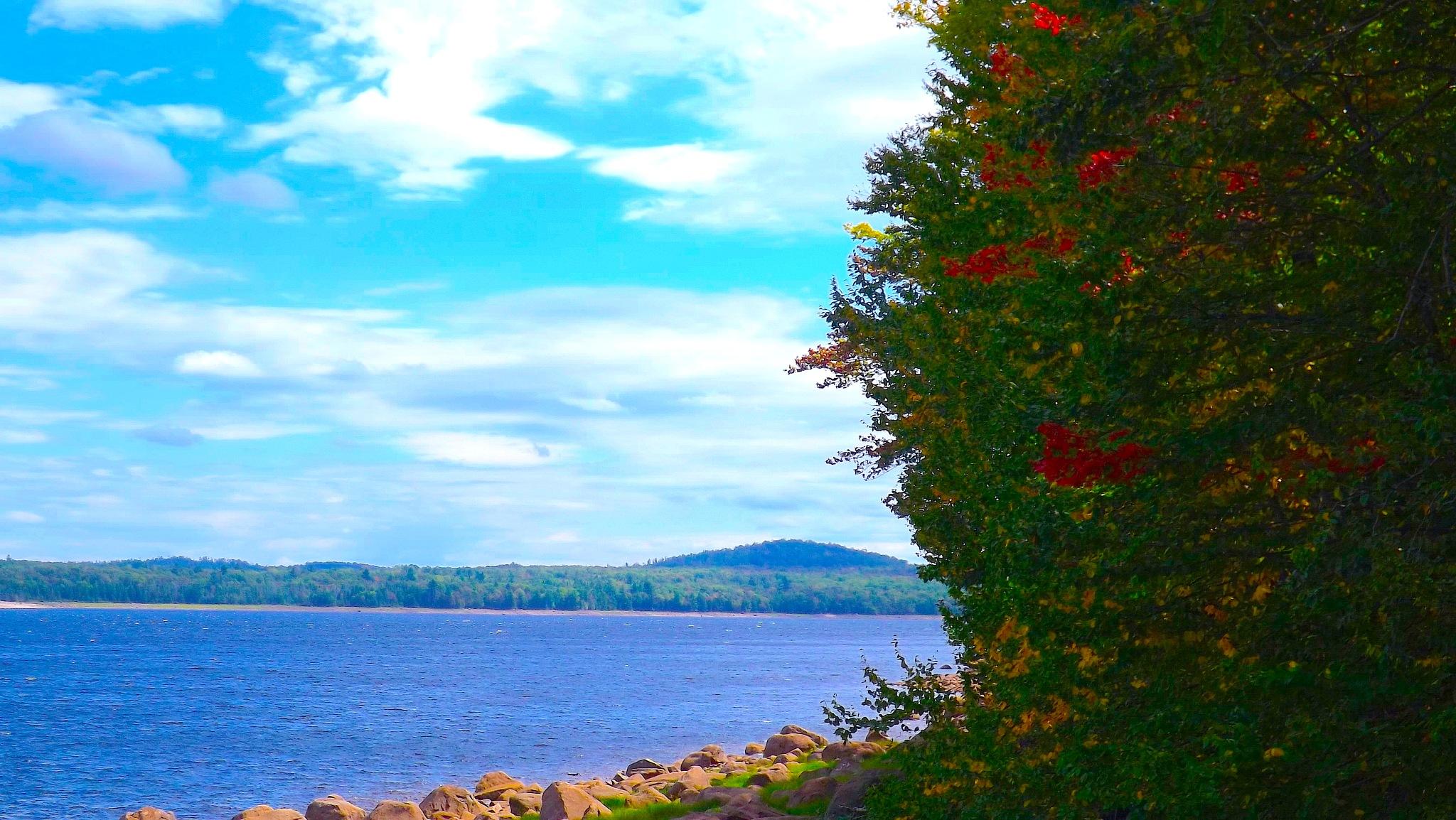 Photo in Landscape #raquette river #new york #upstate ny #river #adirondacks #landscape #nature #foliage #fall #leaves