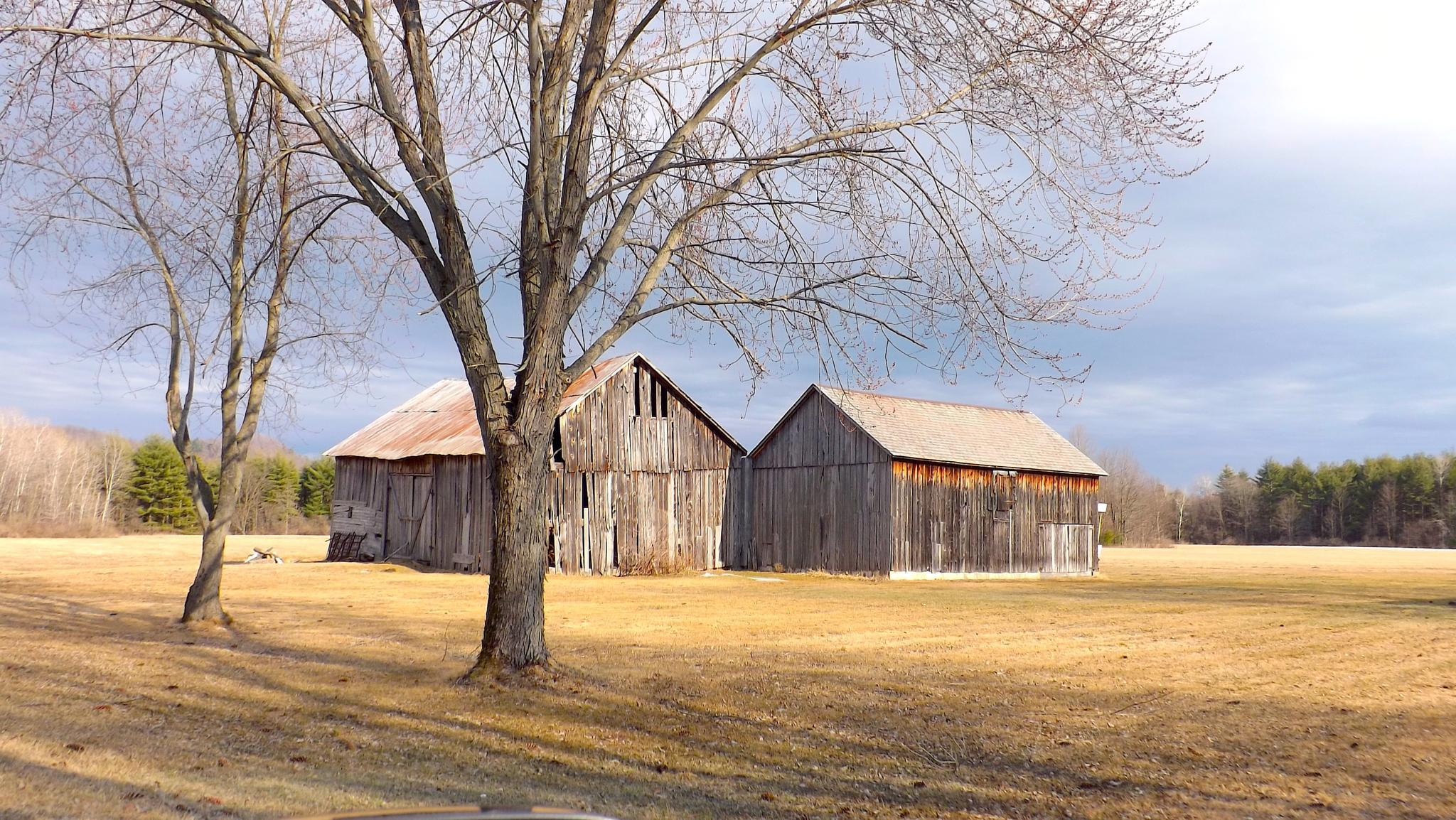 Two Barns by ccbarron1
