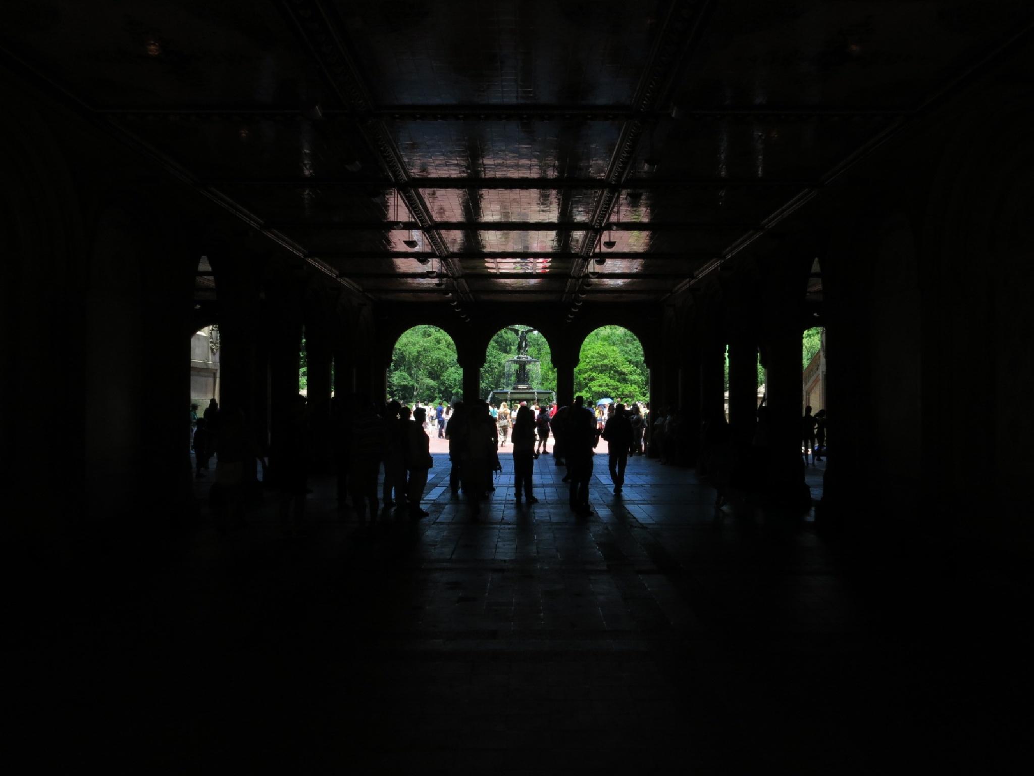 Central Park by martin.sahlberg.67