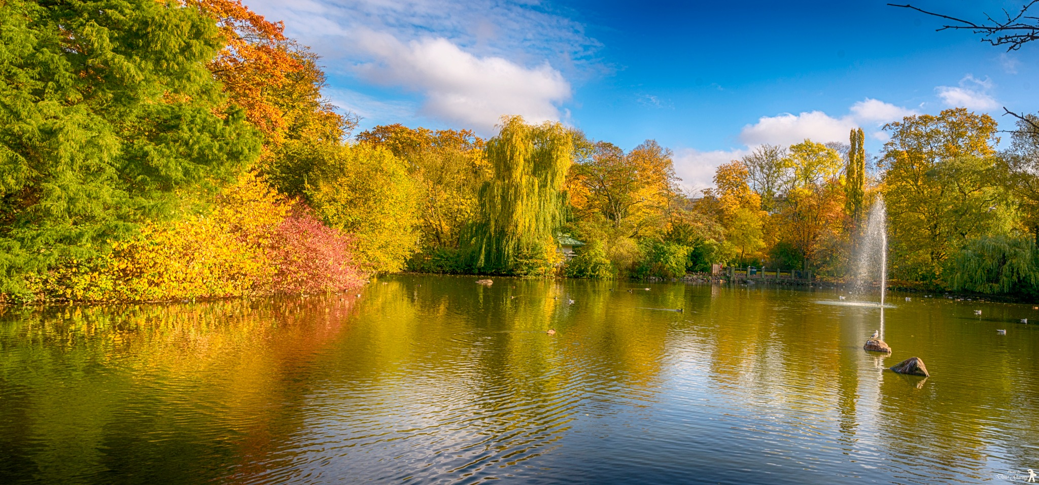 Autumn in the park! by Dino