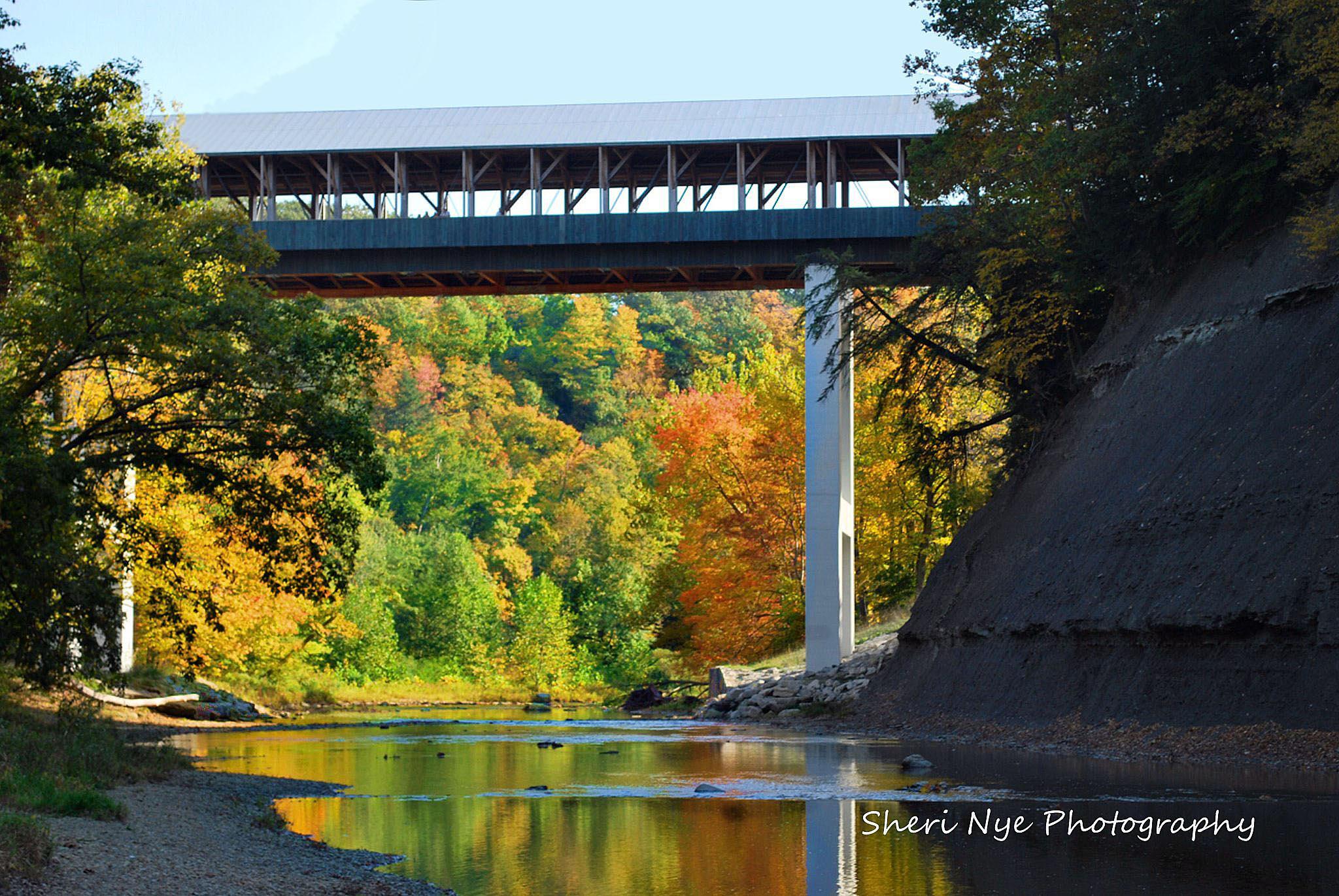 Longest Covered Bridge by sheri.nye