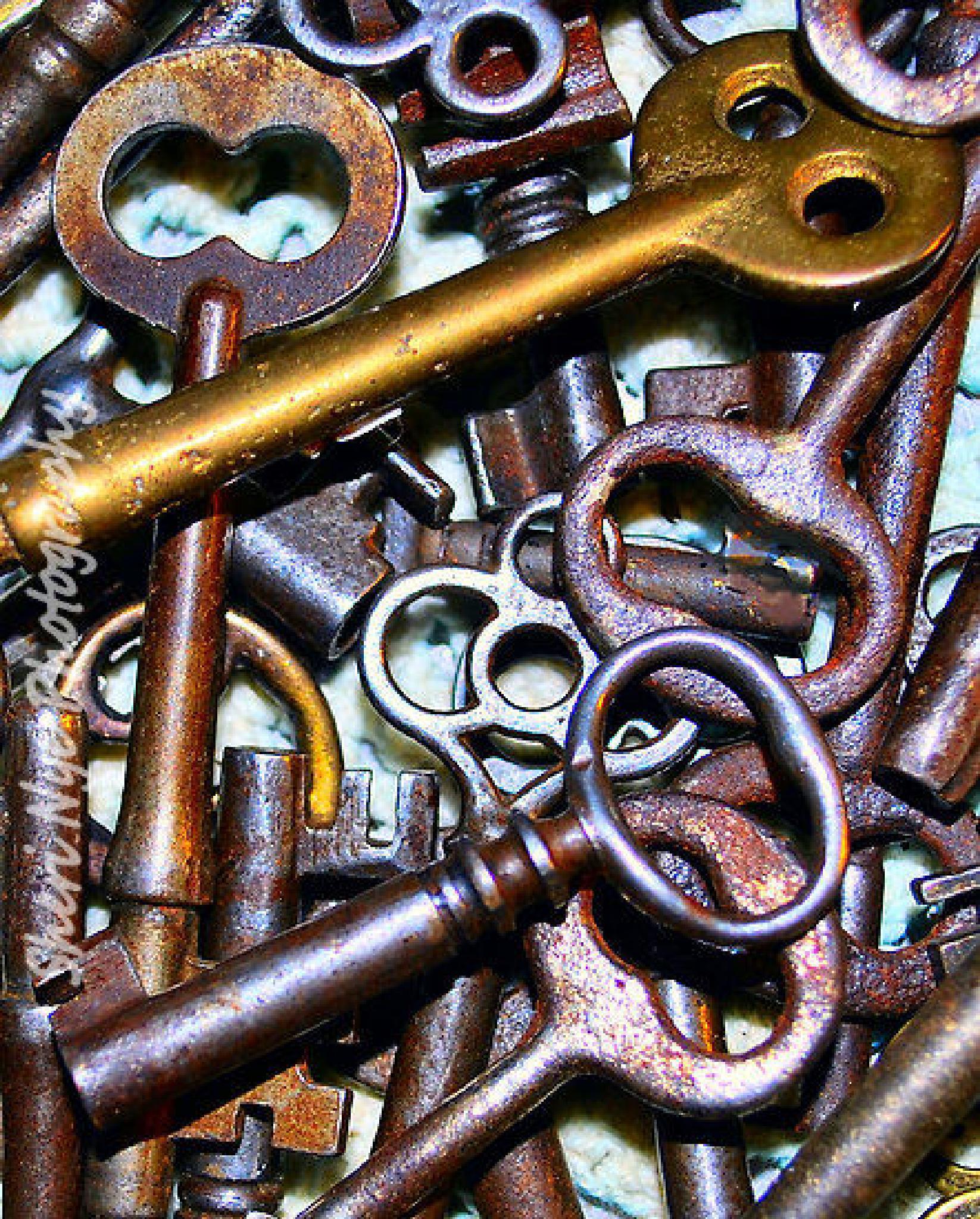 Skeleton Keys by sheri.nye