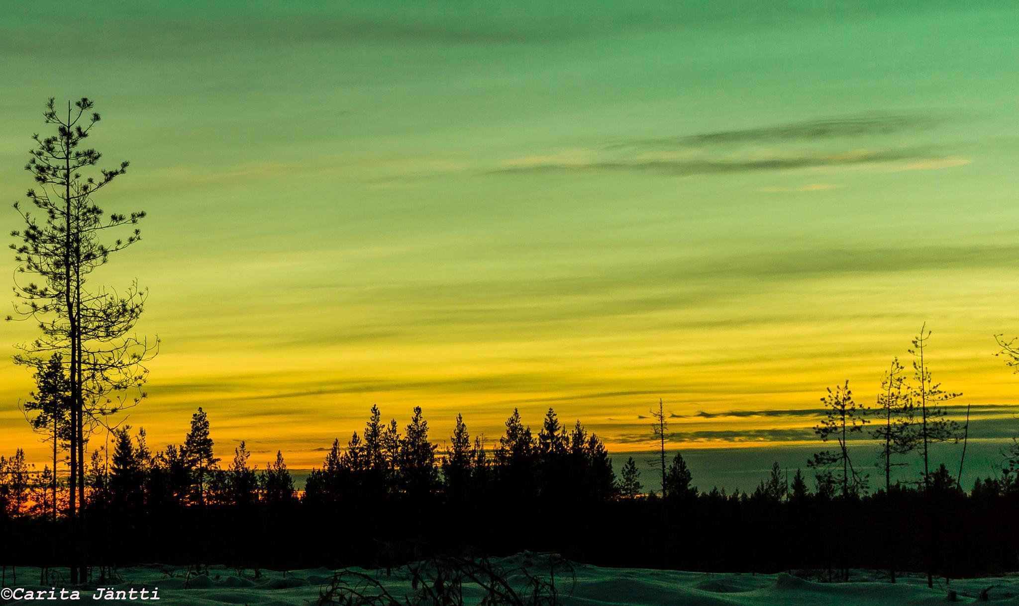 Sunset by Carita Jäntti