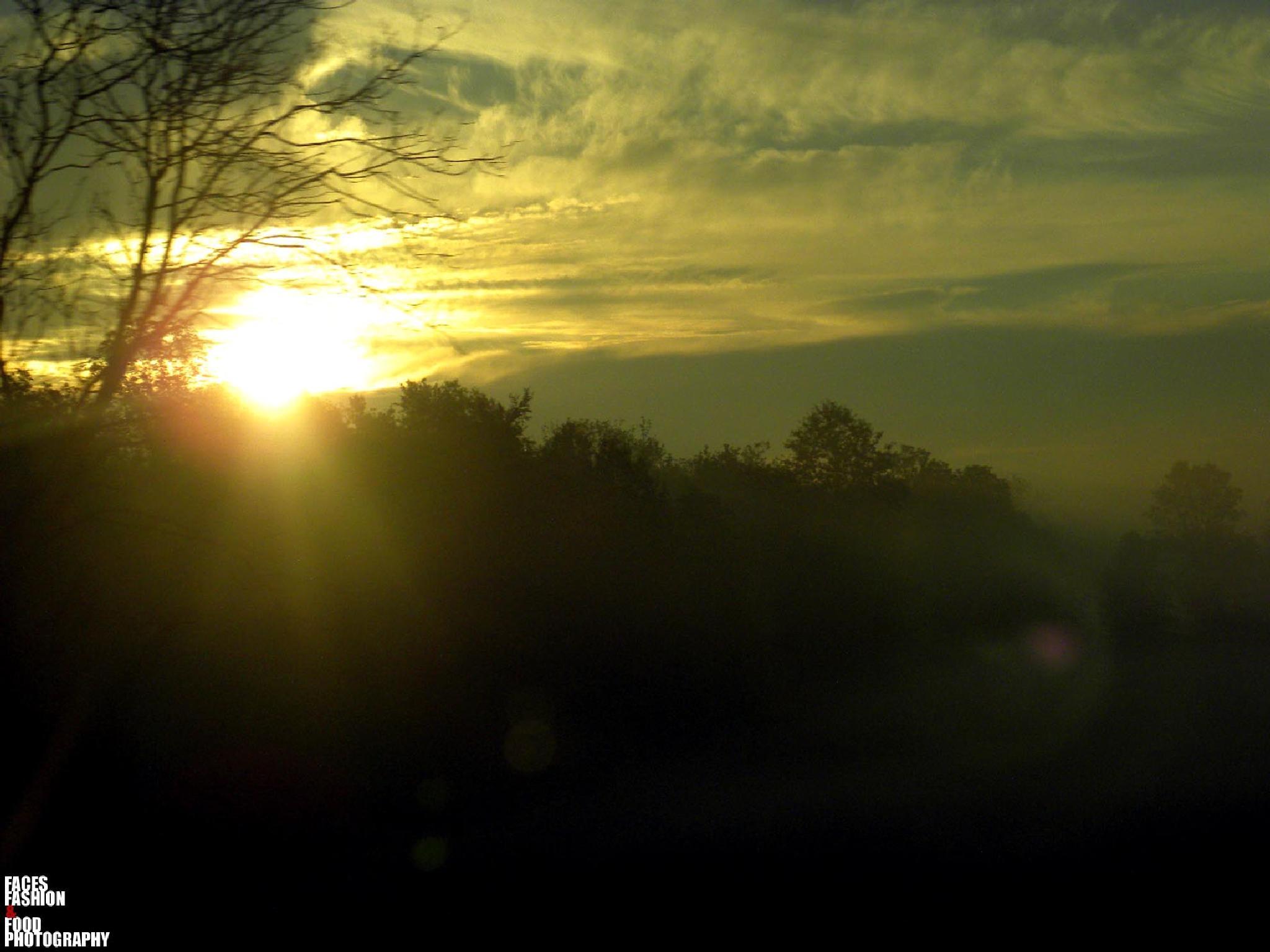 GOOD MORNING TORONTO... by Richelle Desiree