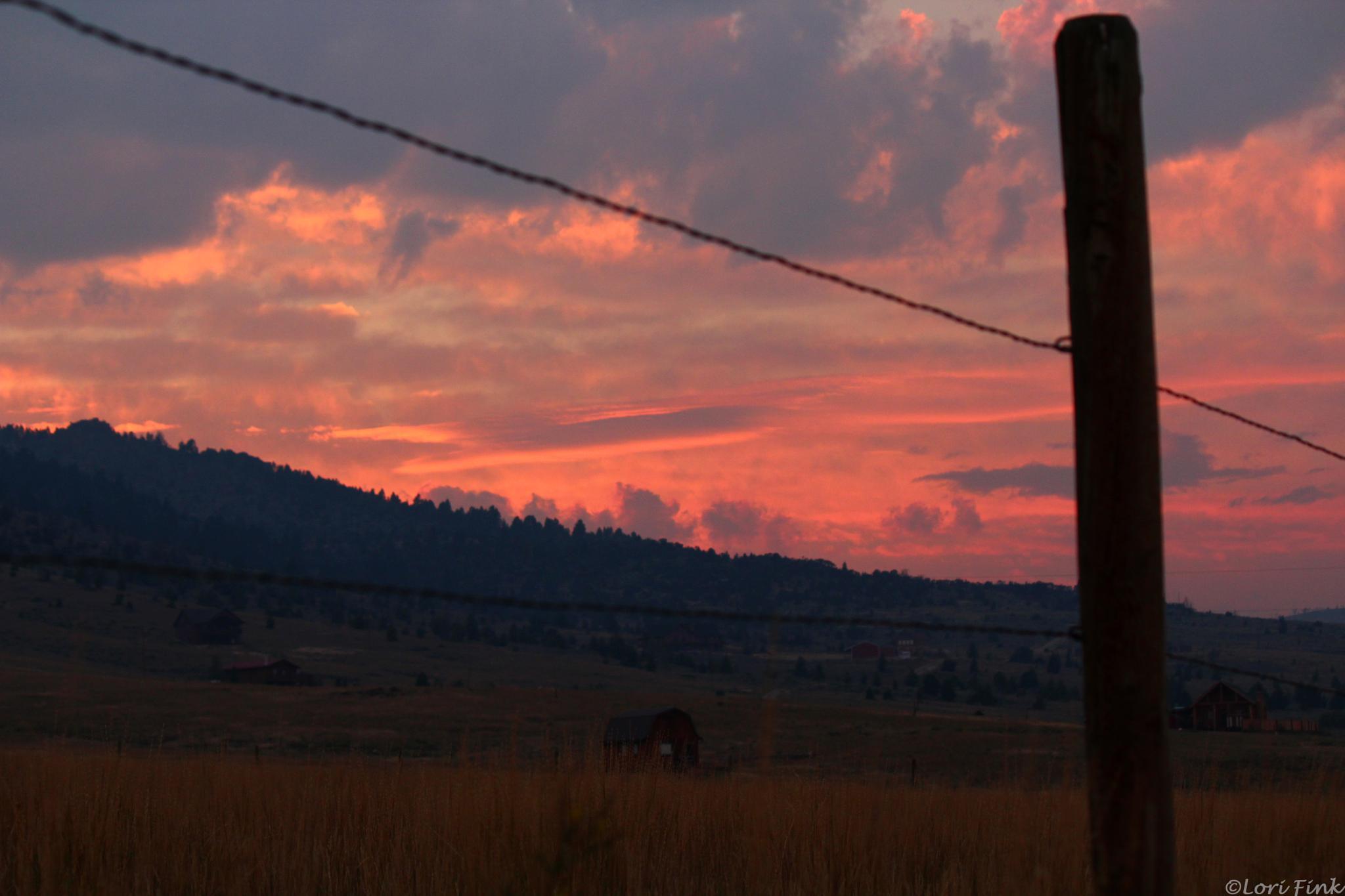 Good night, Montana by Lori J. Fink