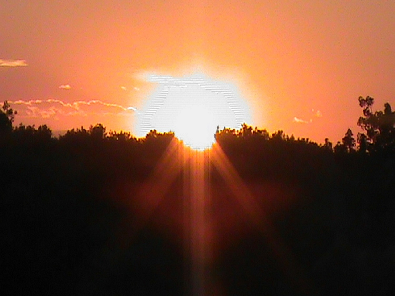 Shape of the Sun by carla.bockla