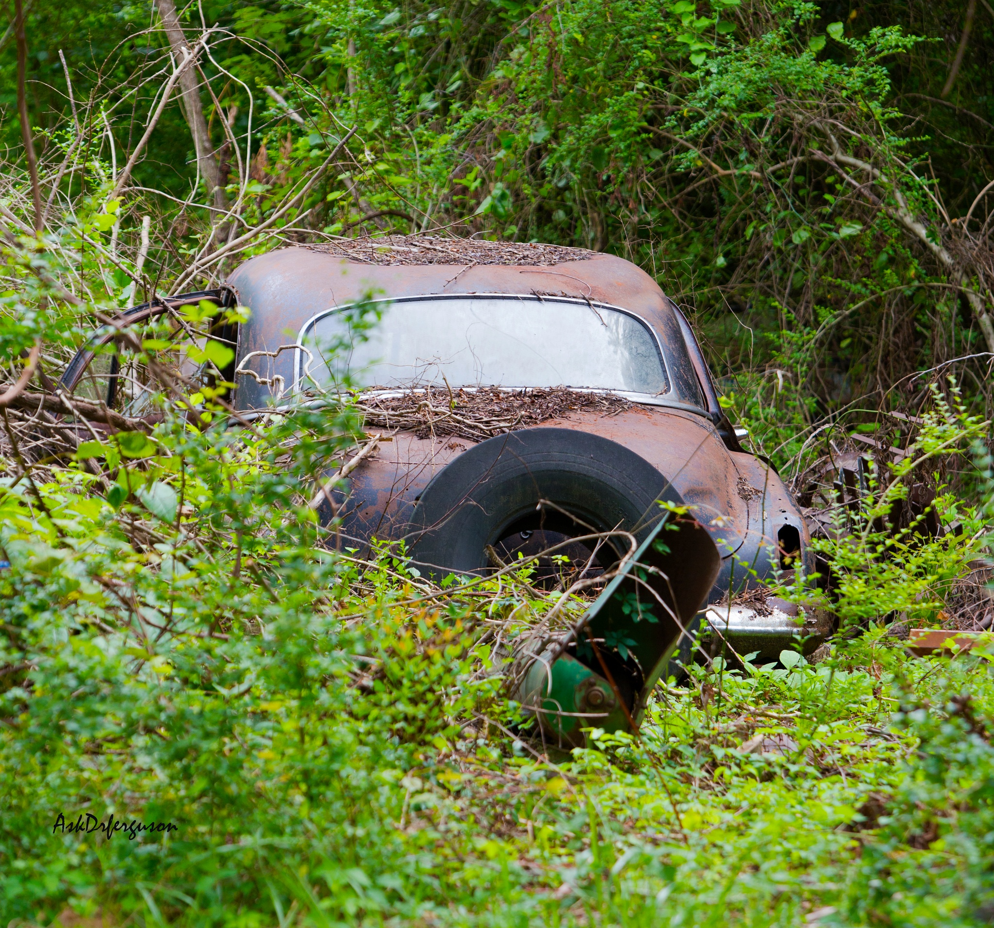 Old Car by askdrferguson