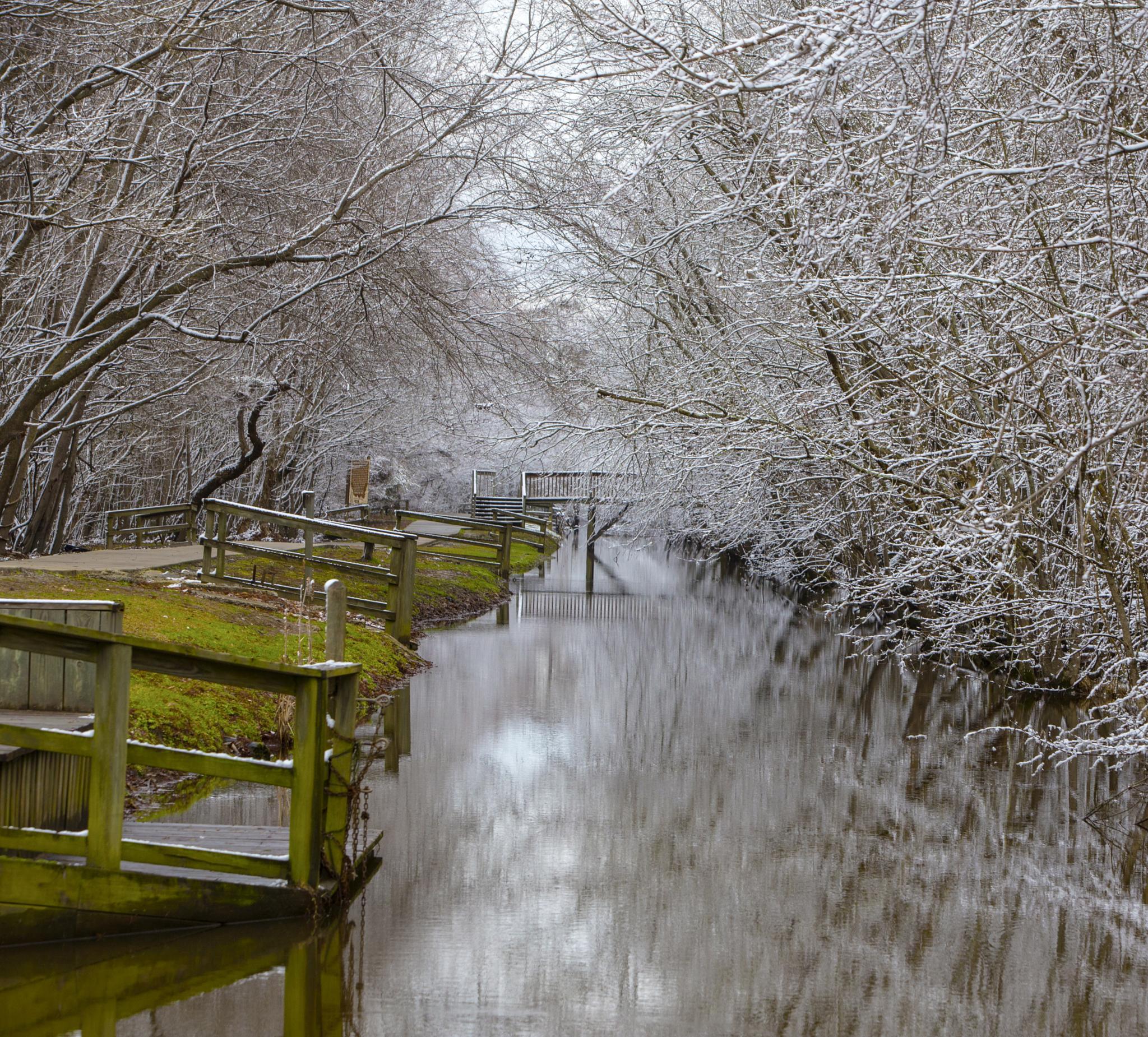 Cashie River in Snow by askdrferguson