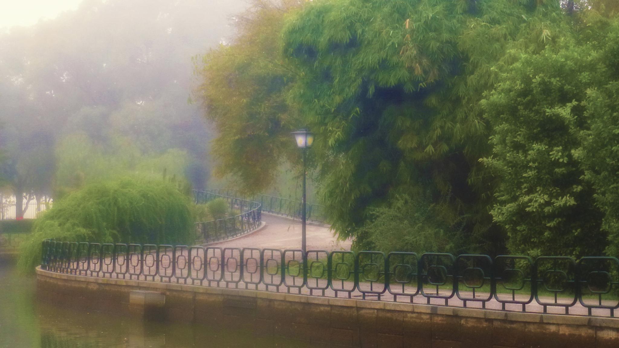 Niebla en el parque by lolacamachotroyano