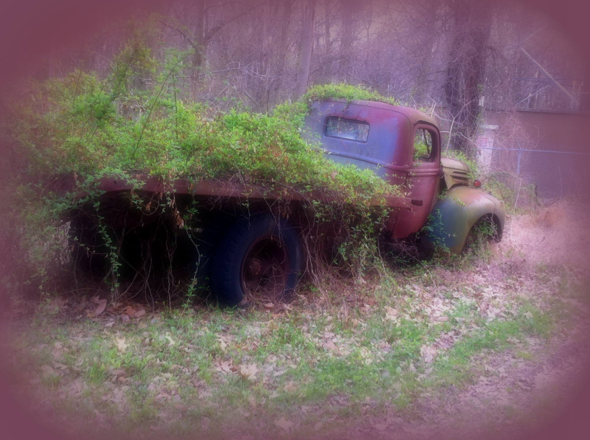 Pop's Truck by Wendy Reinhart-Miller