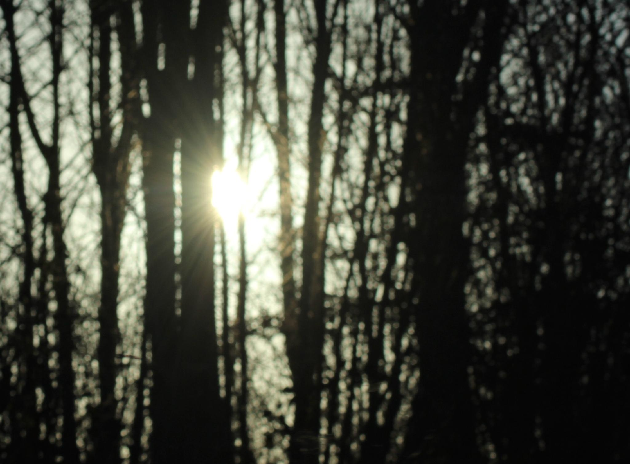 Goonight sun by denise.cicchella