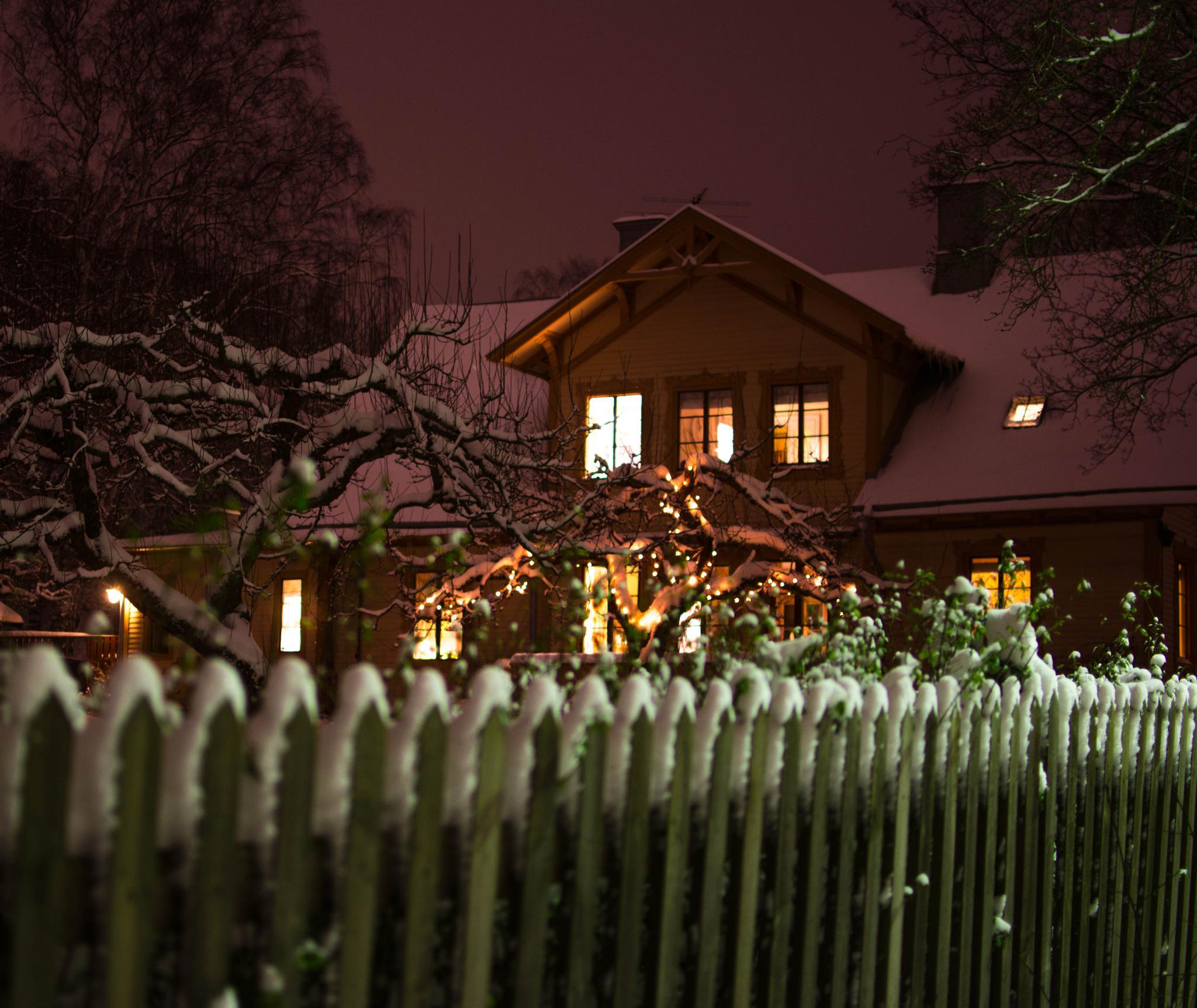 Winter by emanuel.eriksson