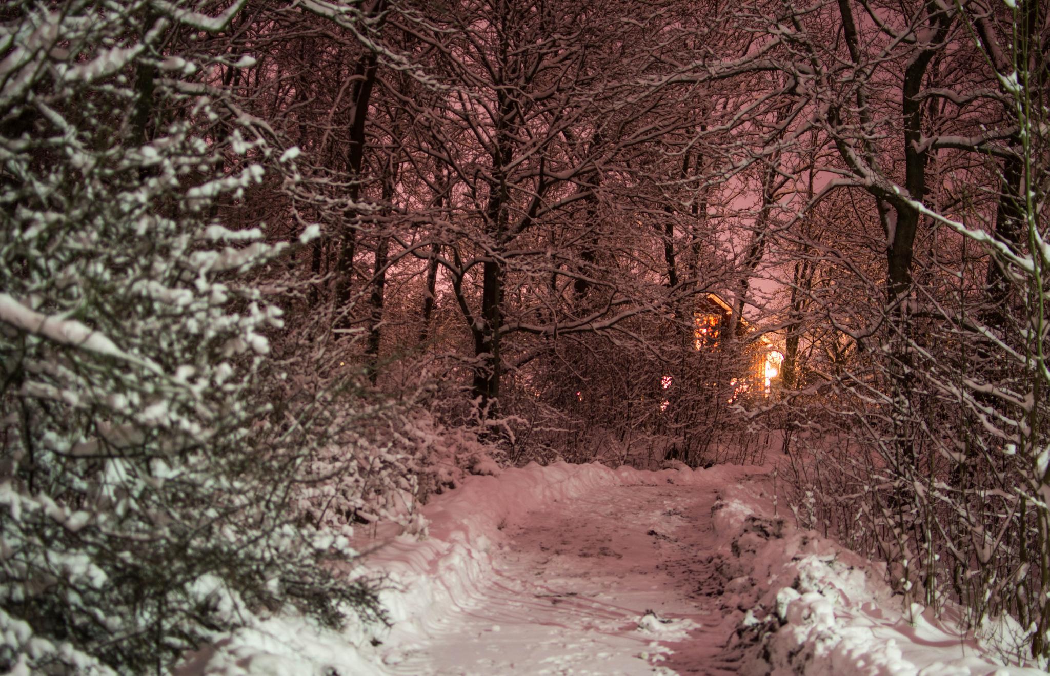Lights in the dark by emanuel.eriksson