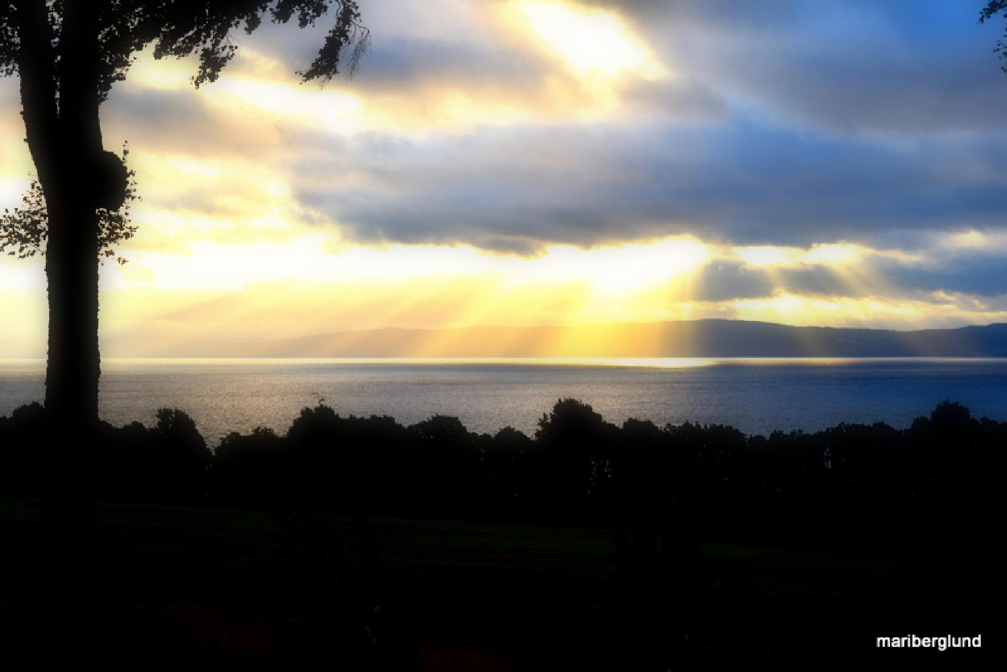 Sunshine by mari.berglund.5