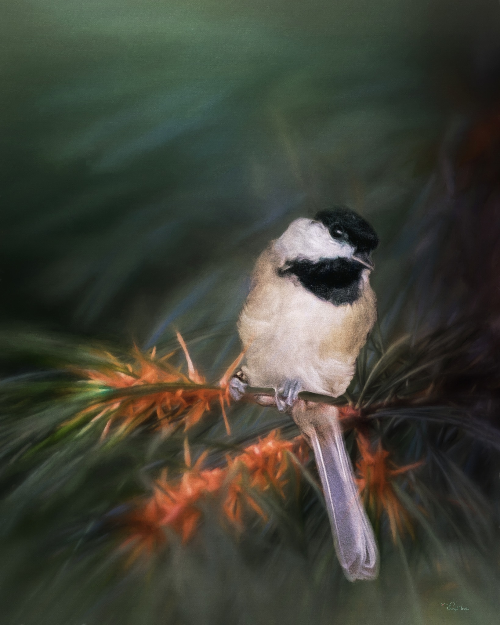 Chickadee hanging out in the backyard  by Cherbeni