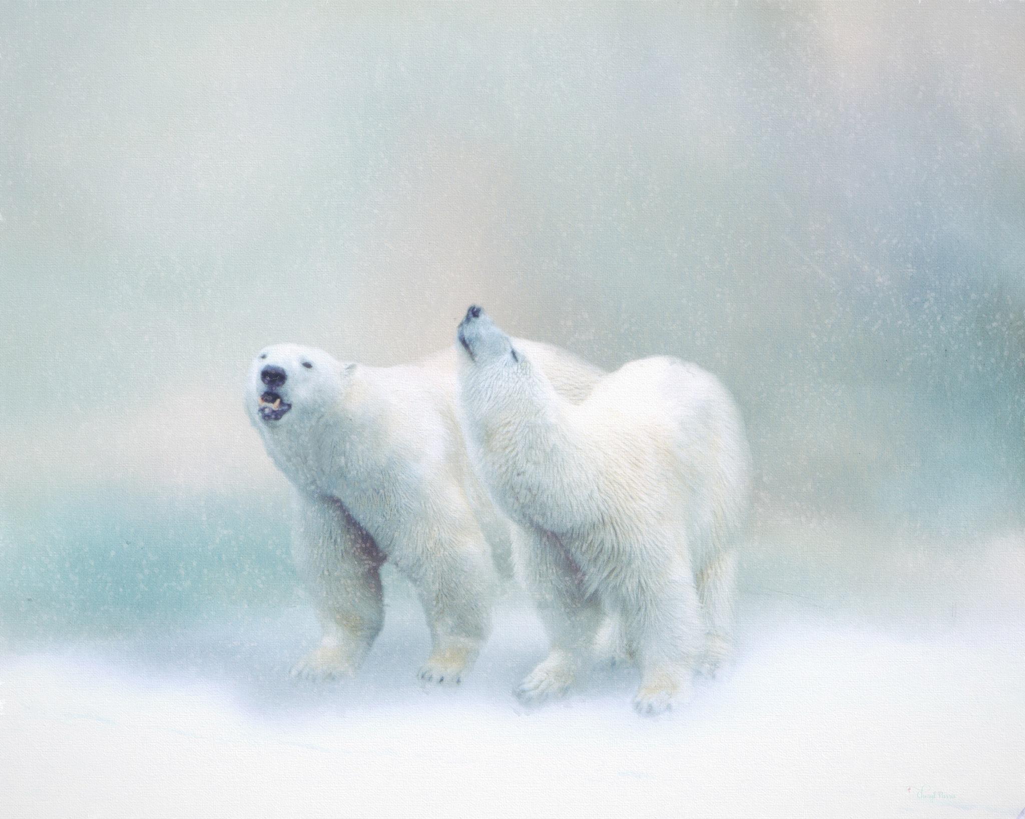 Yay!  It's Snowing! by Cherbeni