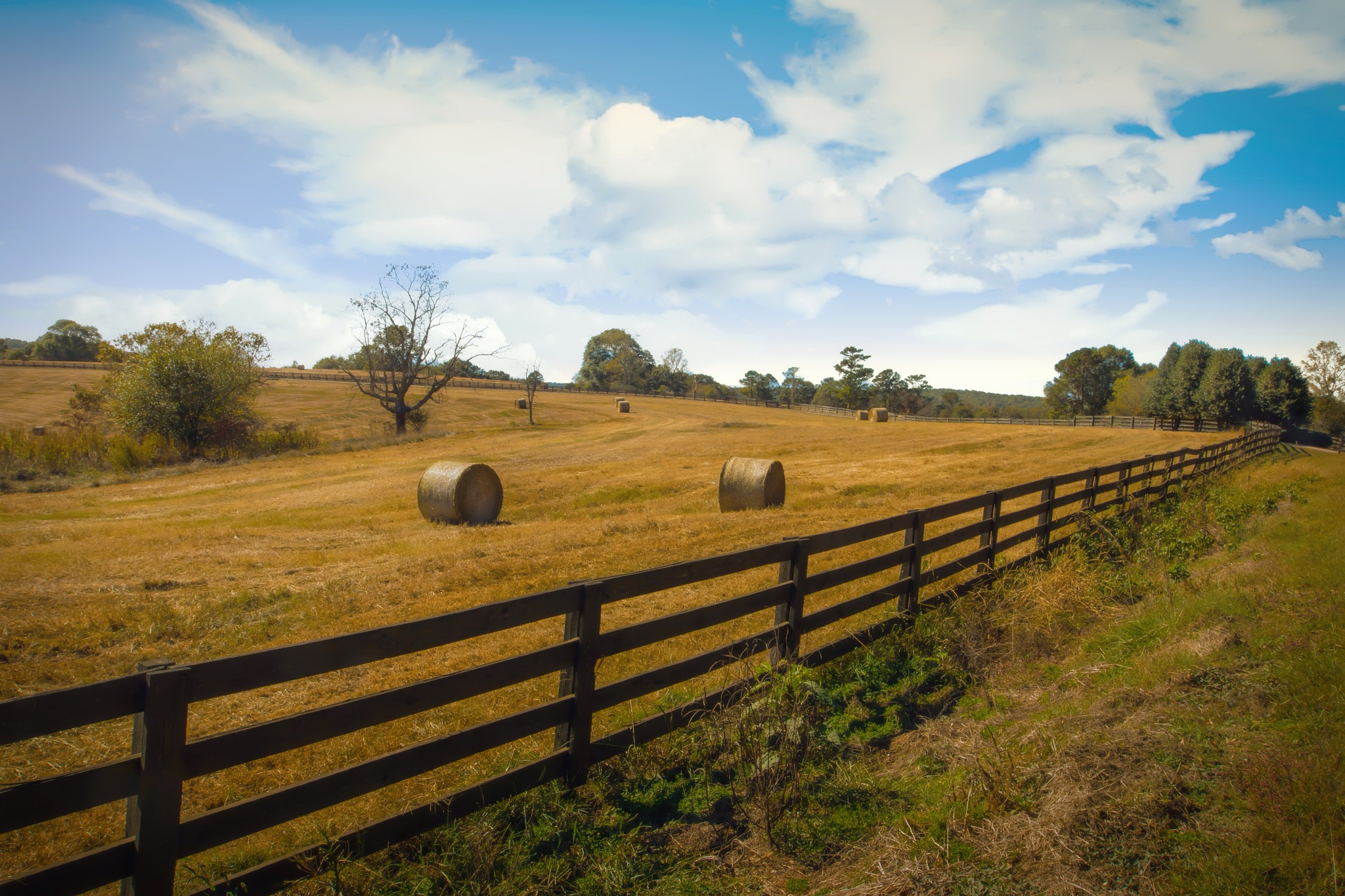 Hay bales in a field - North Georgia by Cherbeni