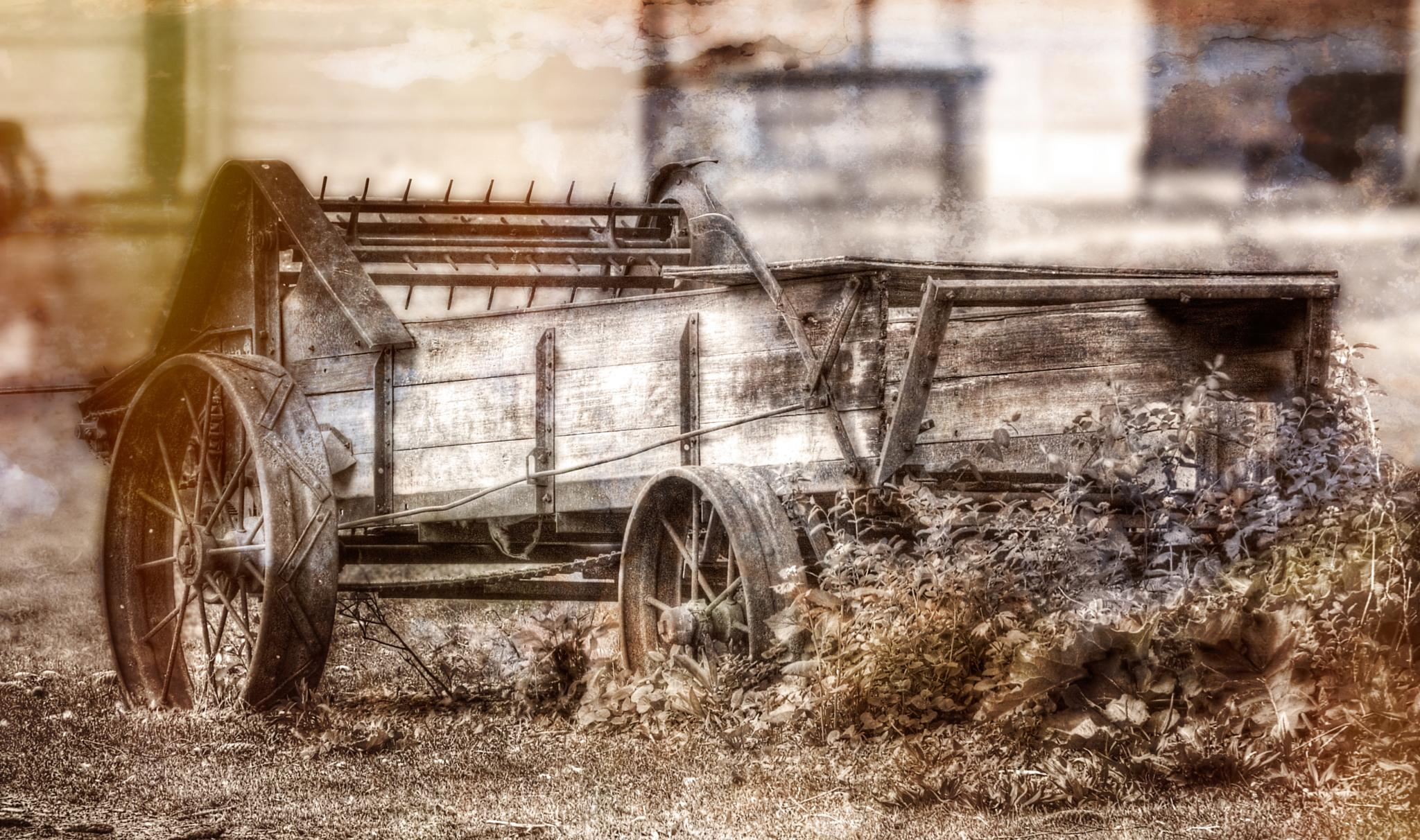 Old Cart by Jared Pease