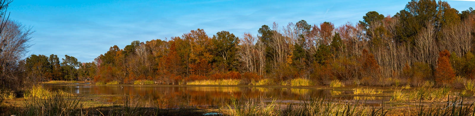 Santee Cooper Country Autumn by Jared Pease