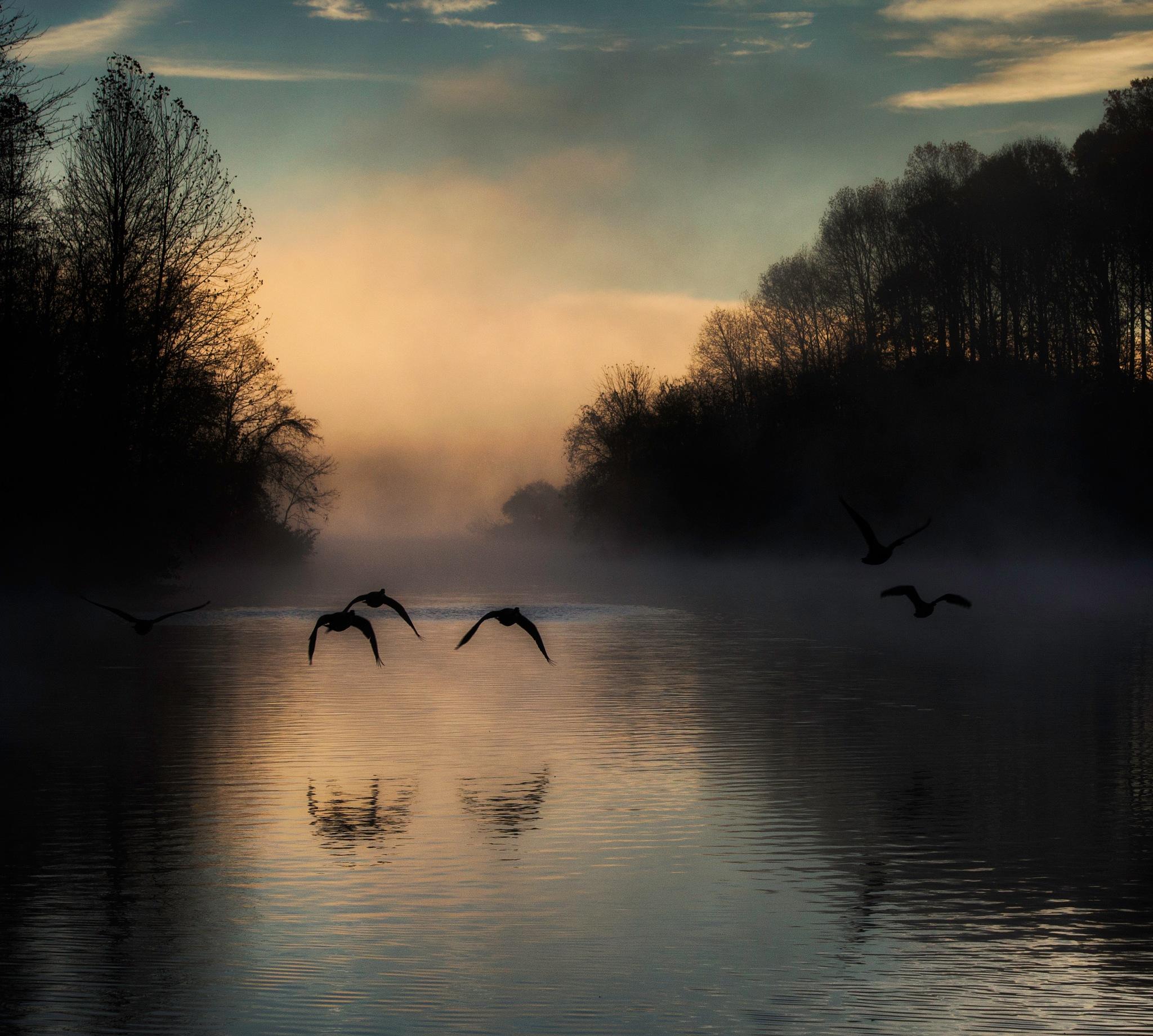 Flight at dawn by power181