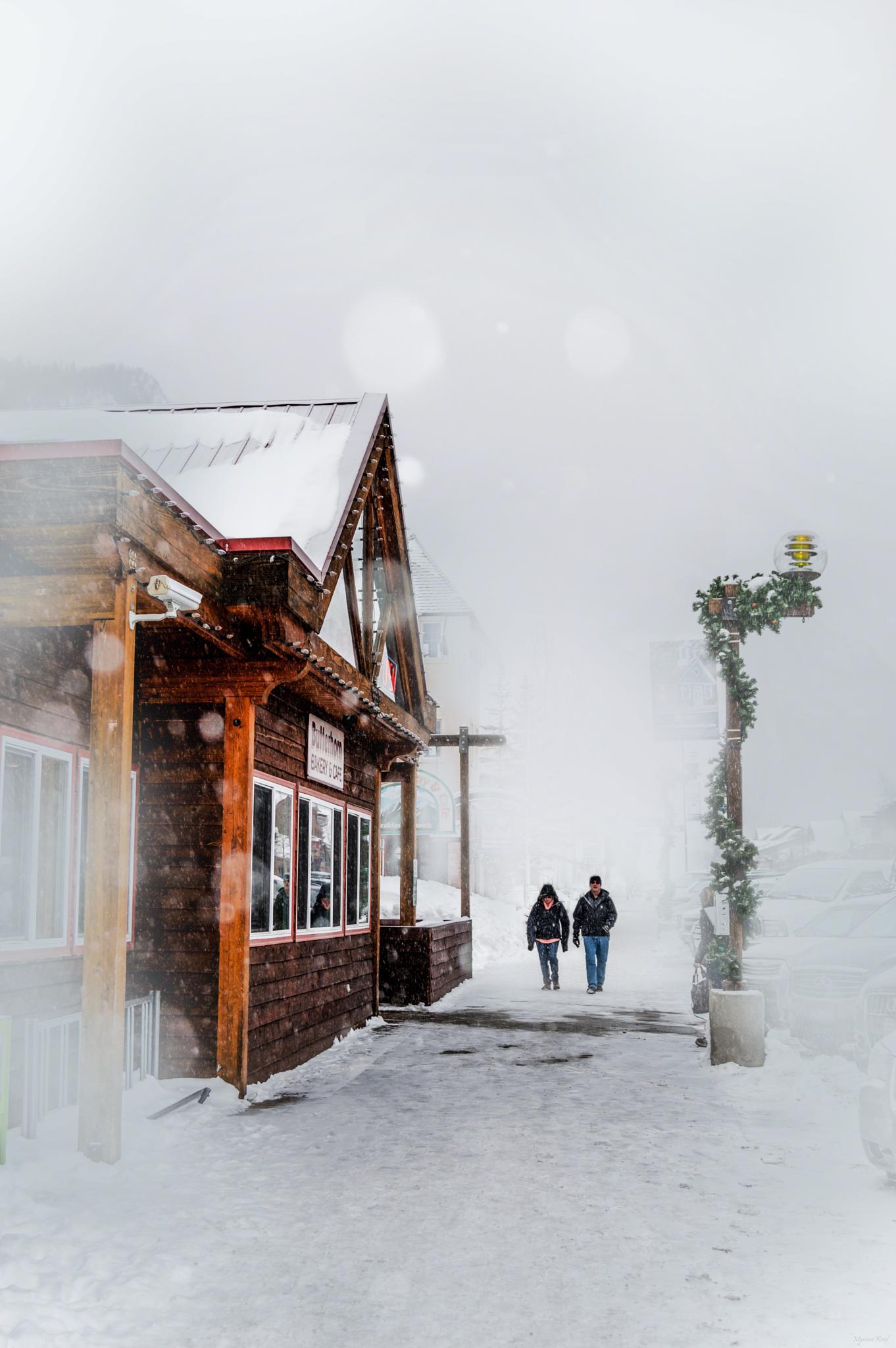 Falling snow by Through my lens
