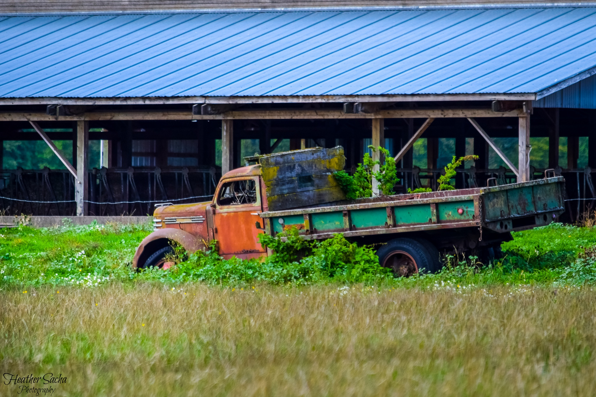 Old Truck by heather.sacha