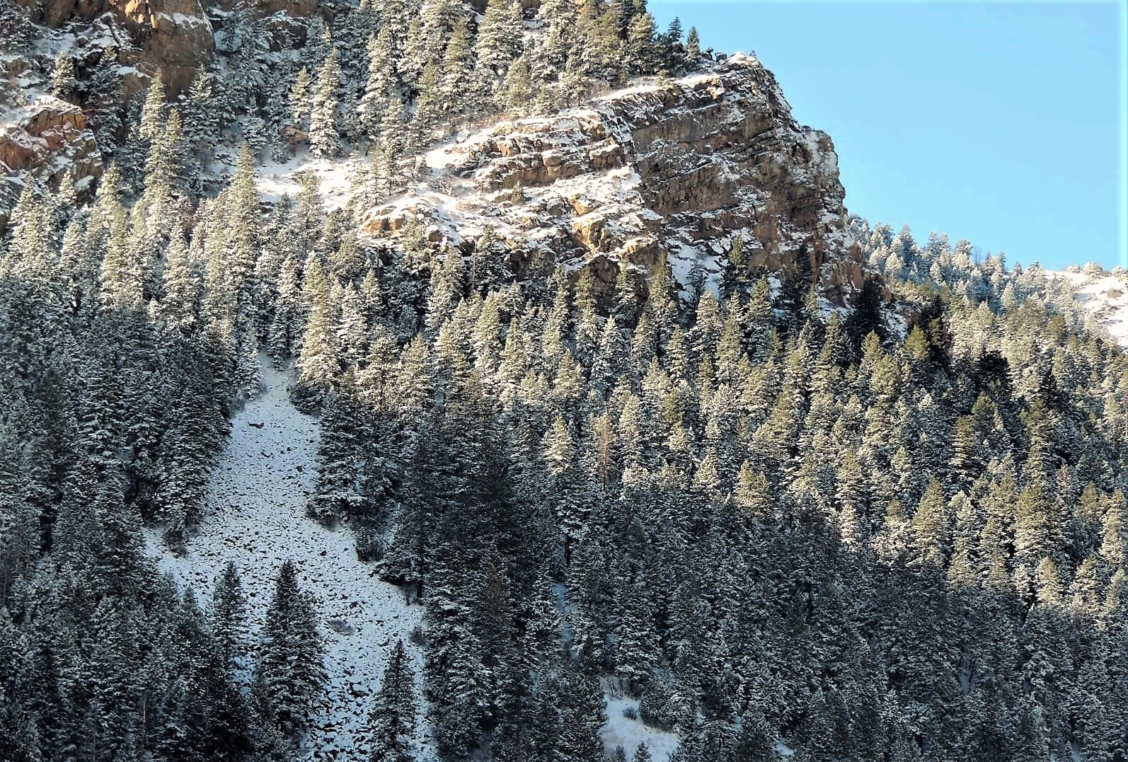 Fresh Powder on the Rockies by amfinsilver