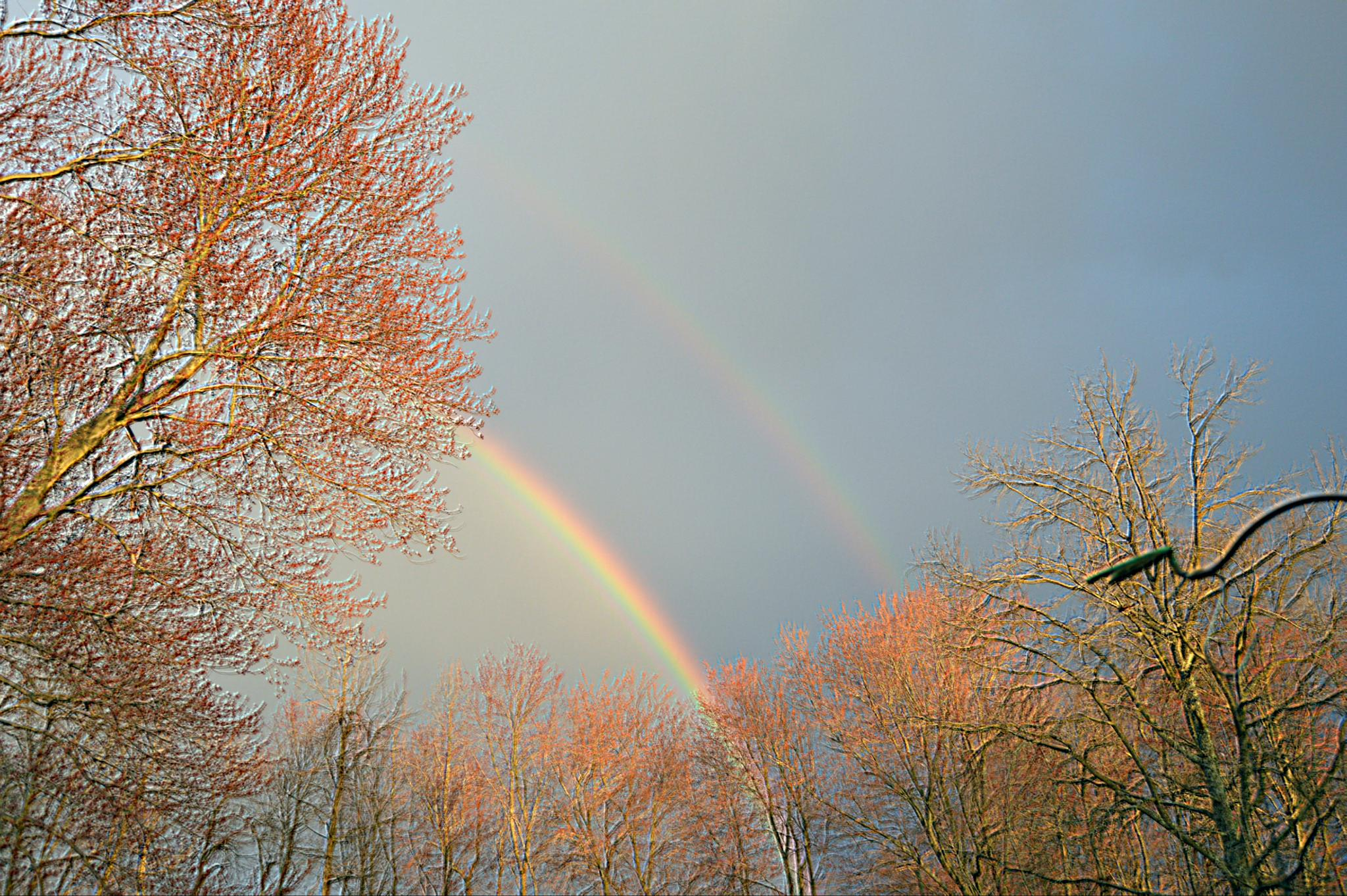 Double Rainbow by donna.reagan2