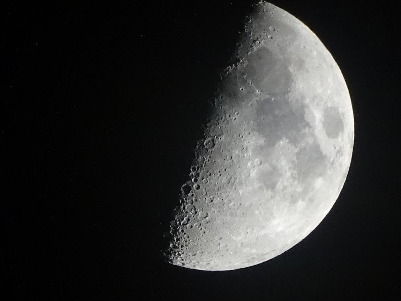 Moon Love  by Maria Helscel