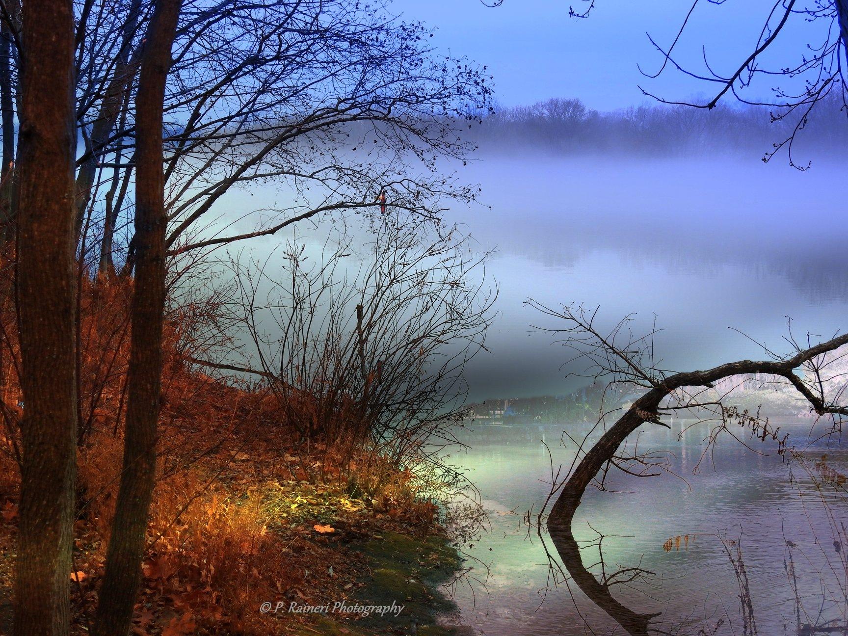 Foggy Morning by pamela.raineri.1