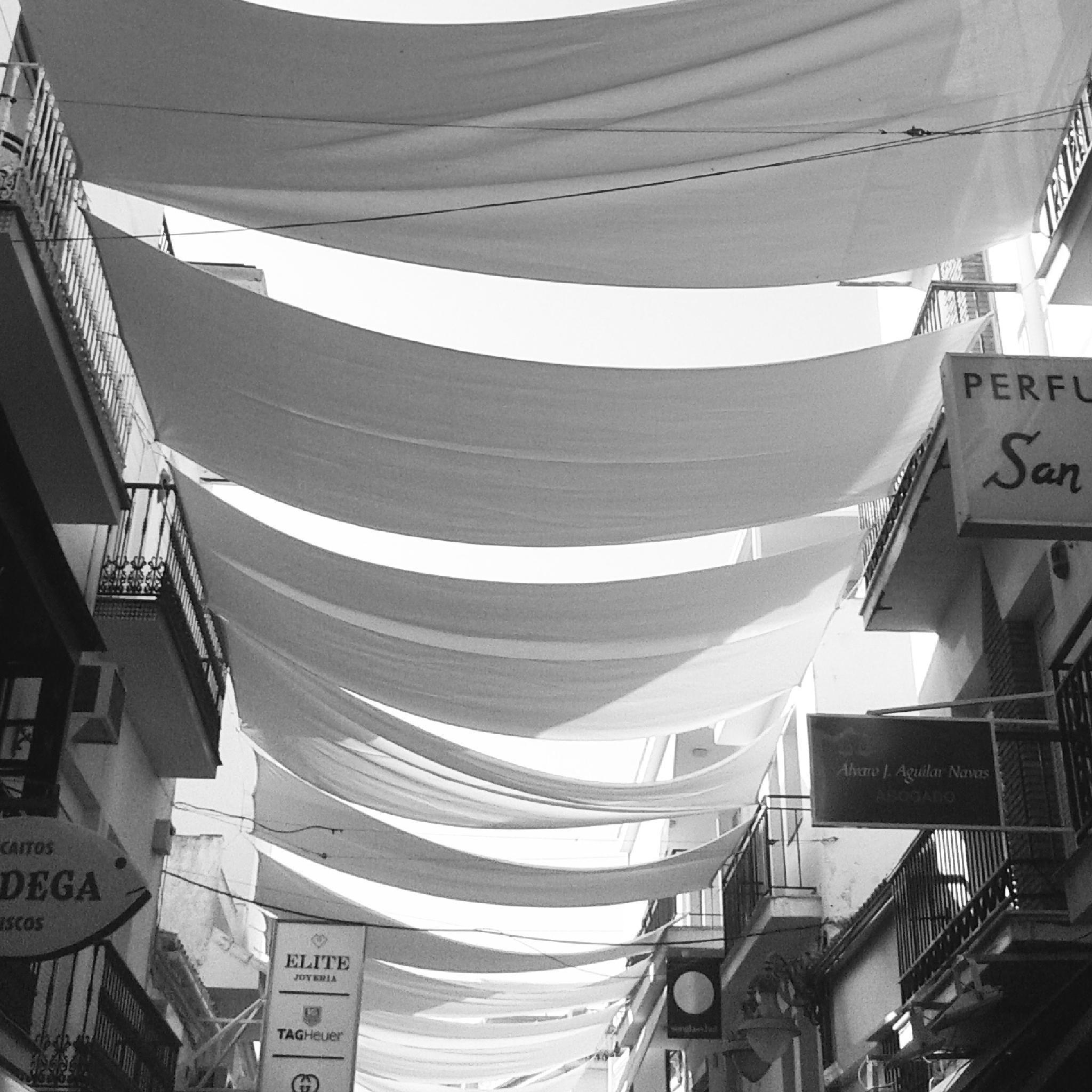Summer Shade in Spain. by Paul Edward Marshall