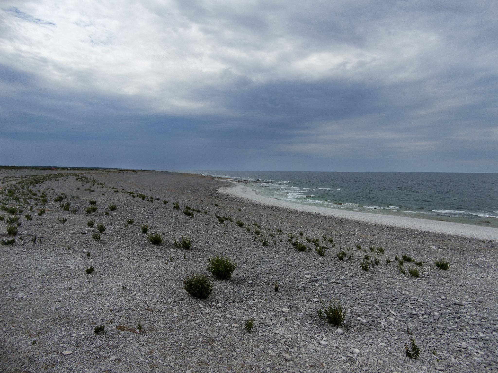 Langhammar beach by Micke Seise