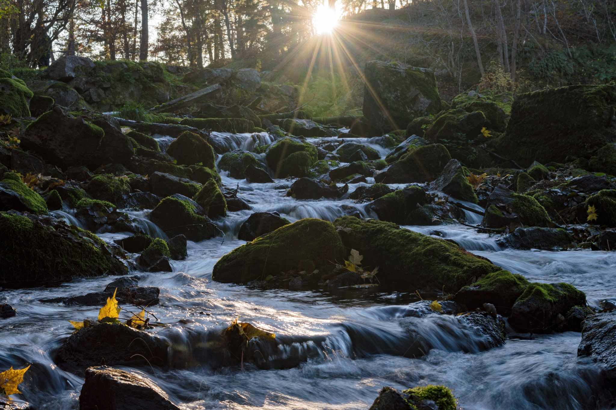 Waterfall backlit by Micke Seise