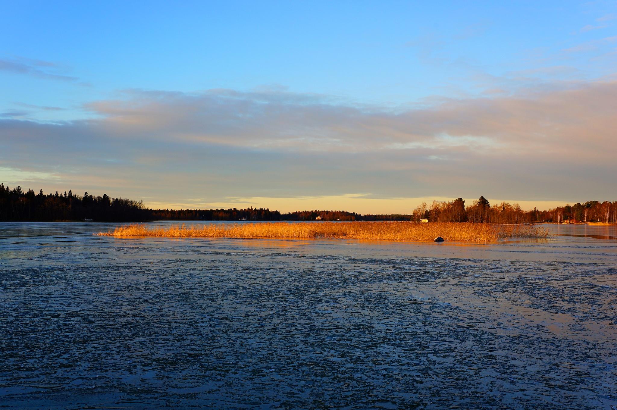 The afternoon sun by Bror Sandås