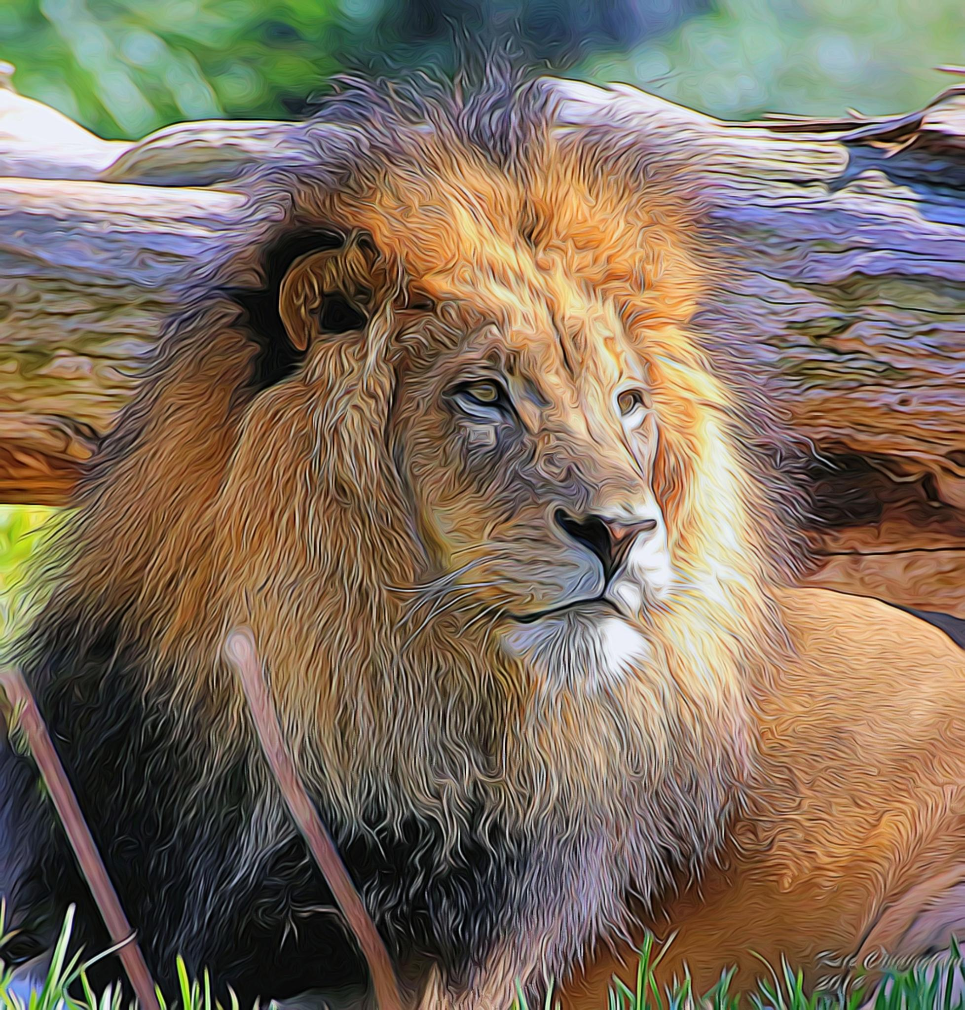 Lion_Topaz Labs Furs and Feathers by Kathrynjcunningham2
